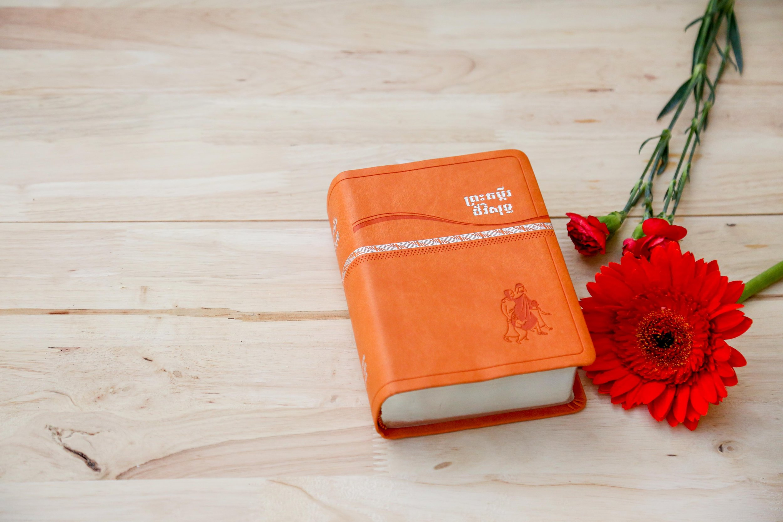 Bible and red flower.jpg
