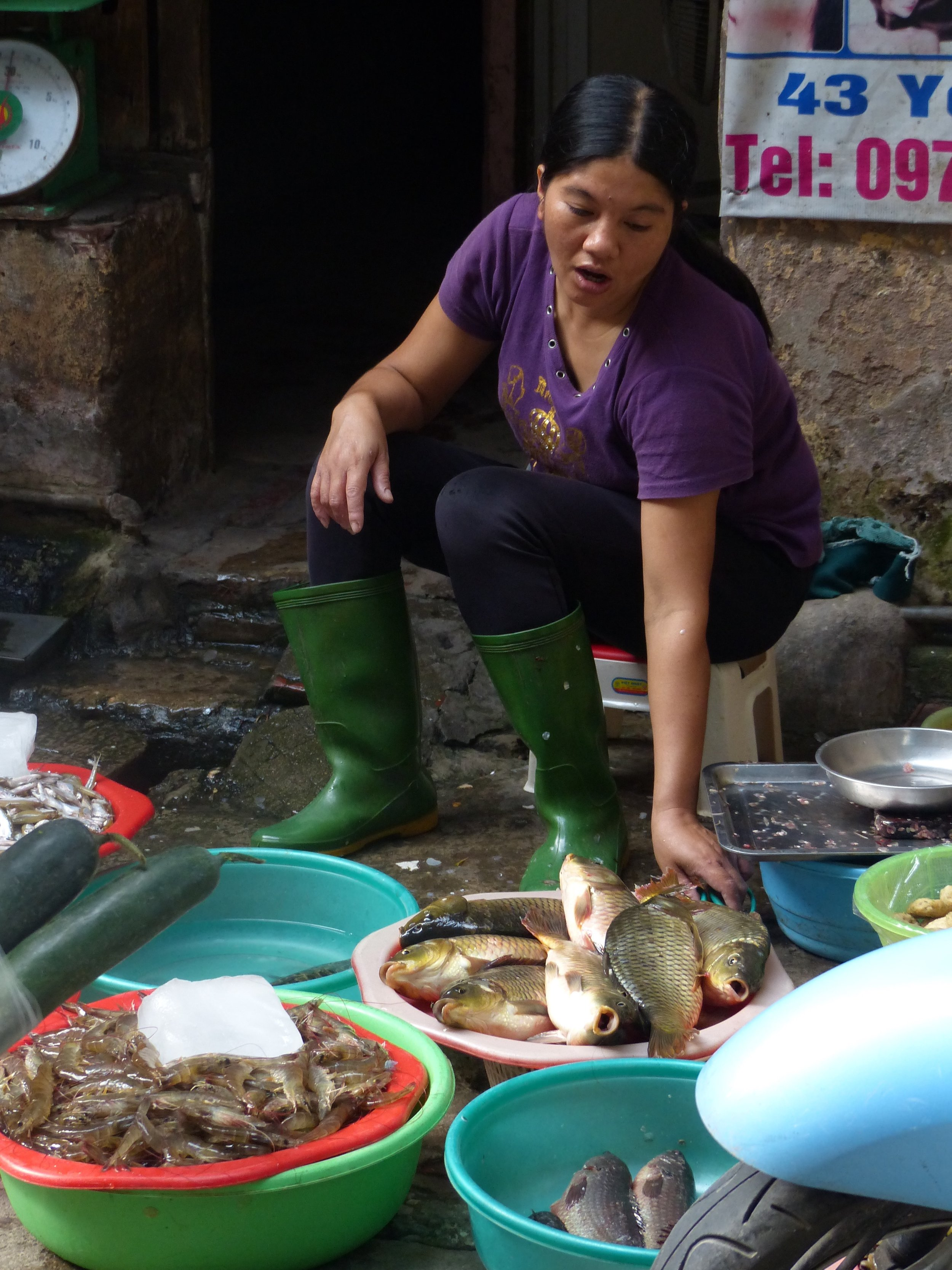 In Hanoi, we didn't see any fish shops (or butcher shops, or any real food shops). Instead, fish were piled in these buckets with a little hose magic to keep water flowing.