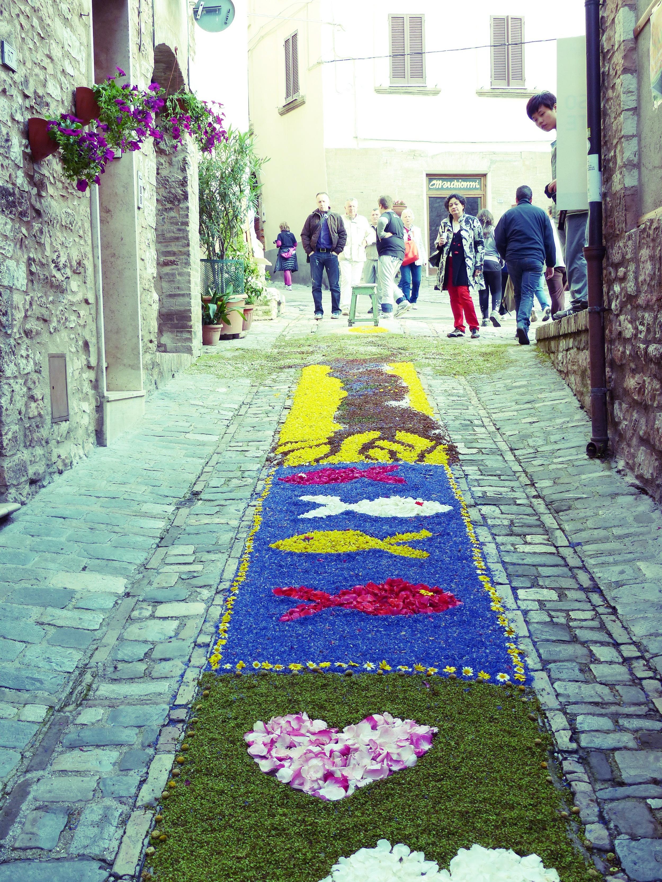 Flowers at Infiorata in Spello, Umbria