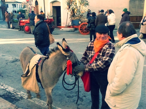 Donkey at L'Oro di Spello, Umbria