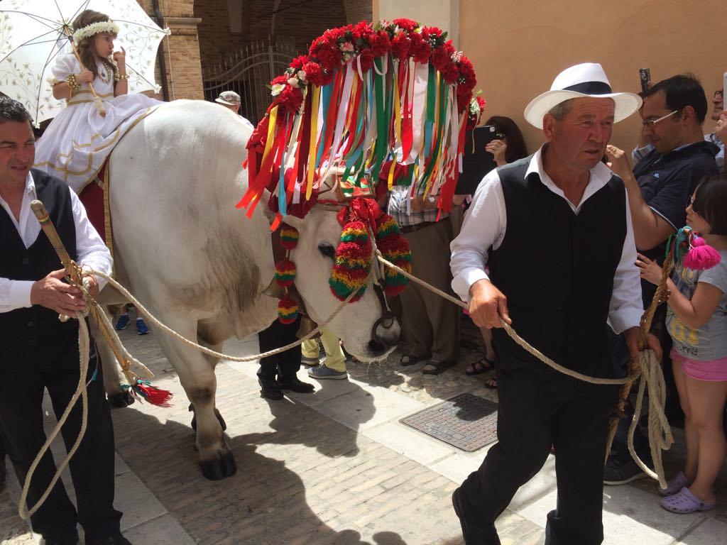 festival of San Zopito, Loreto Aprutino