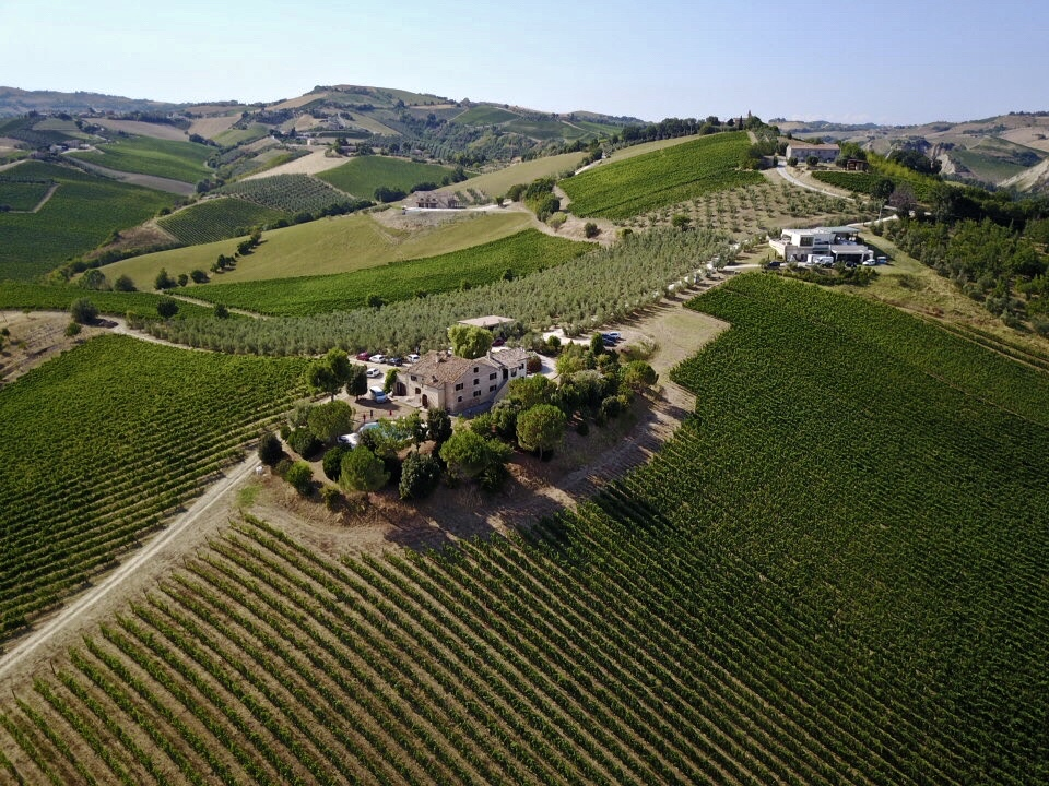 Winery in Le Marche, Italy