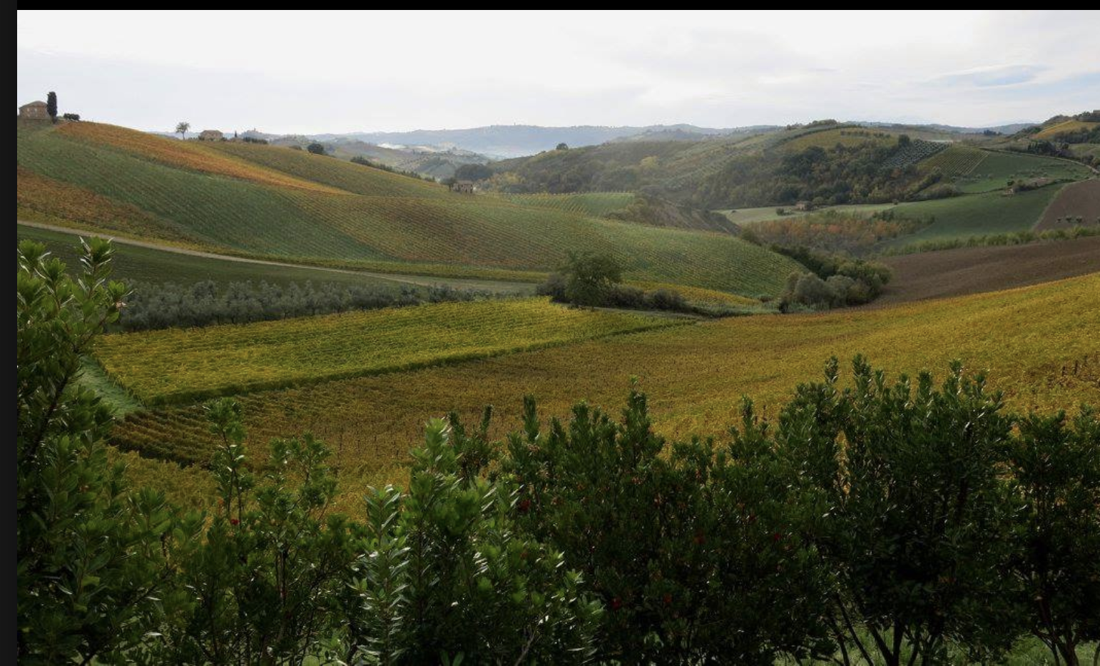 Hills of Southern Marche region of Italy