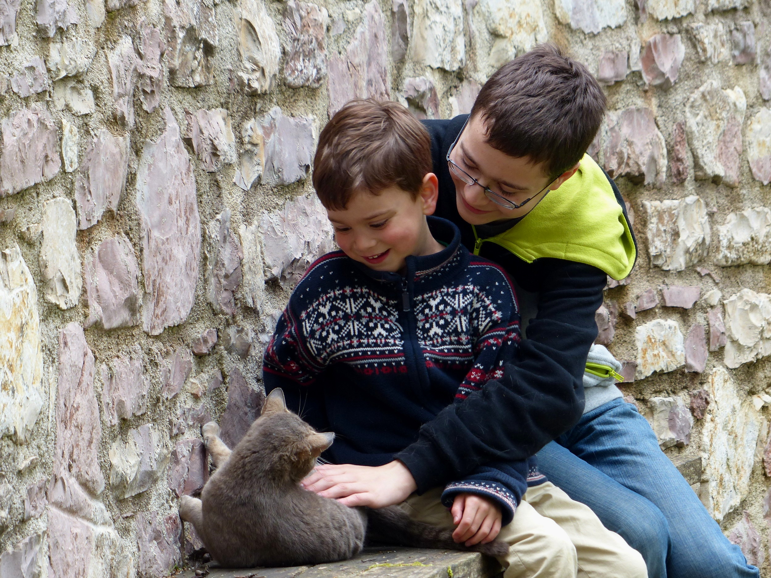 Nicolas and Gabe befriend the town cats