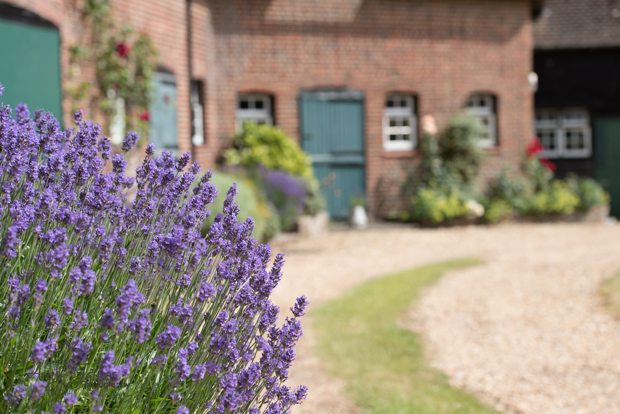 Hampshire wedding photographer / Barn wedding / Fleet wedding photograher