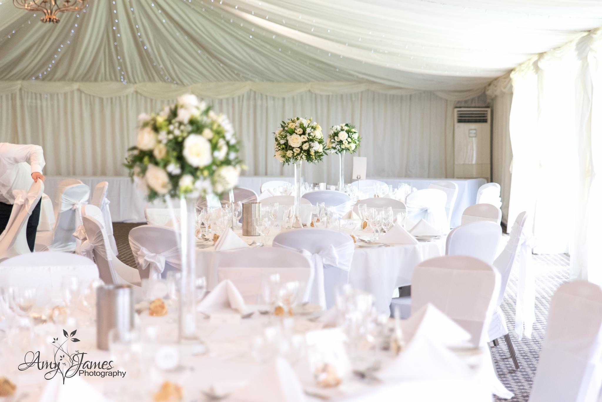 Amy James Photography // Hampshire Wedding Photographer // Hamoshire wedding venues // Surrey Wedding Venues // Audley Wood Hotel Wedding // Marquee wedding