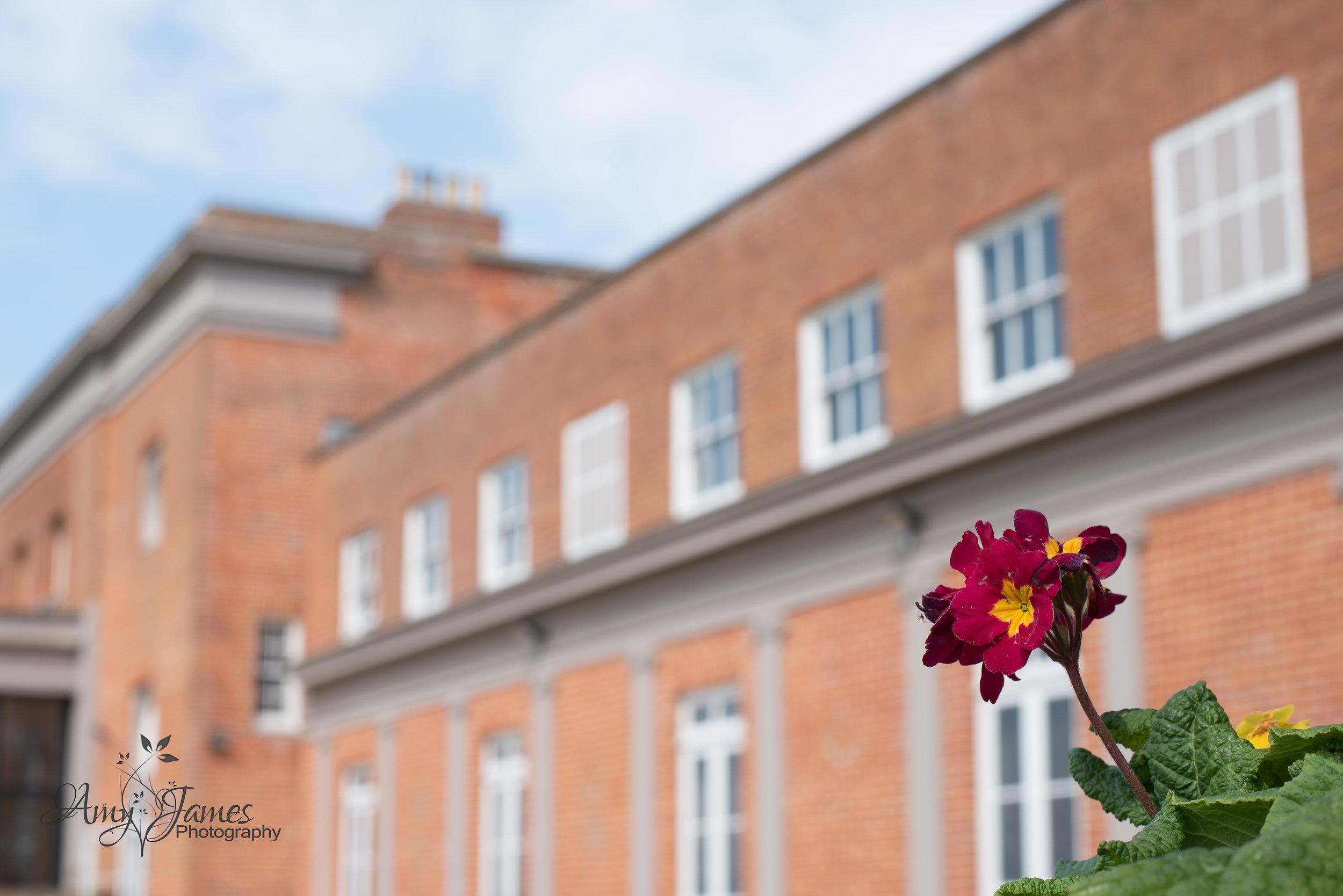 Hampsire Wedding photographer | Northbrook Park wedding photographer | Surrey Wedding photographer | Amy James Photography