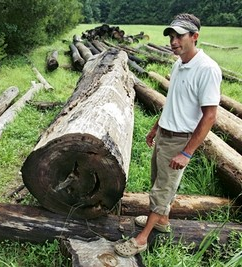 Justin Herrington recovered this cypress tree that shows the crevices of 'shake ring' damage from high winds during storms.