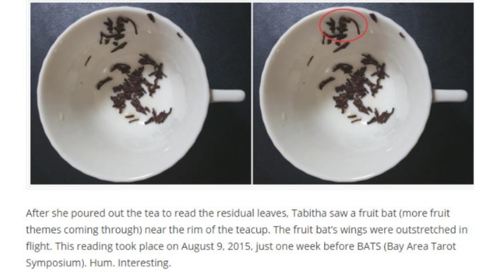 Benebell's blog excerpt shows the fruit bat I saw in her tea cup.