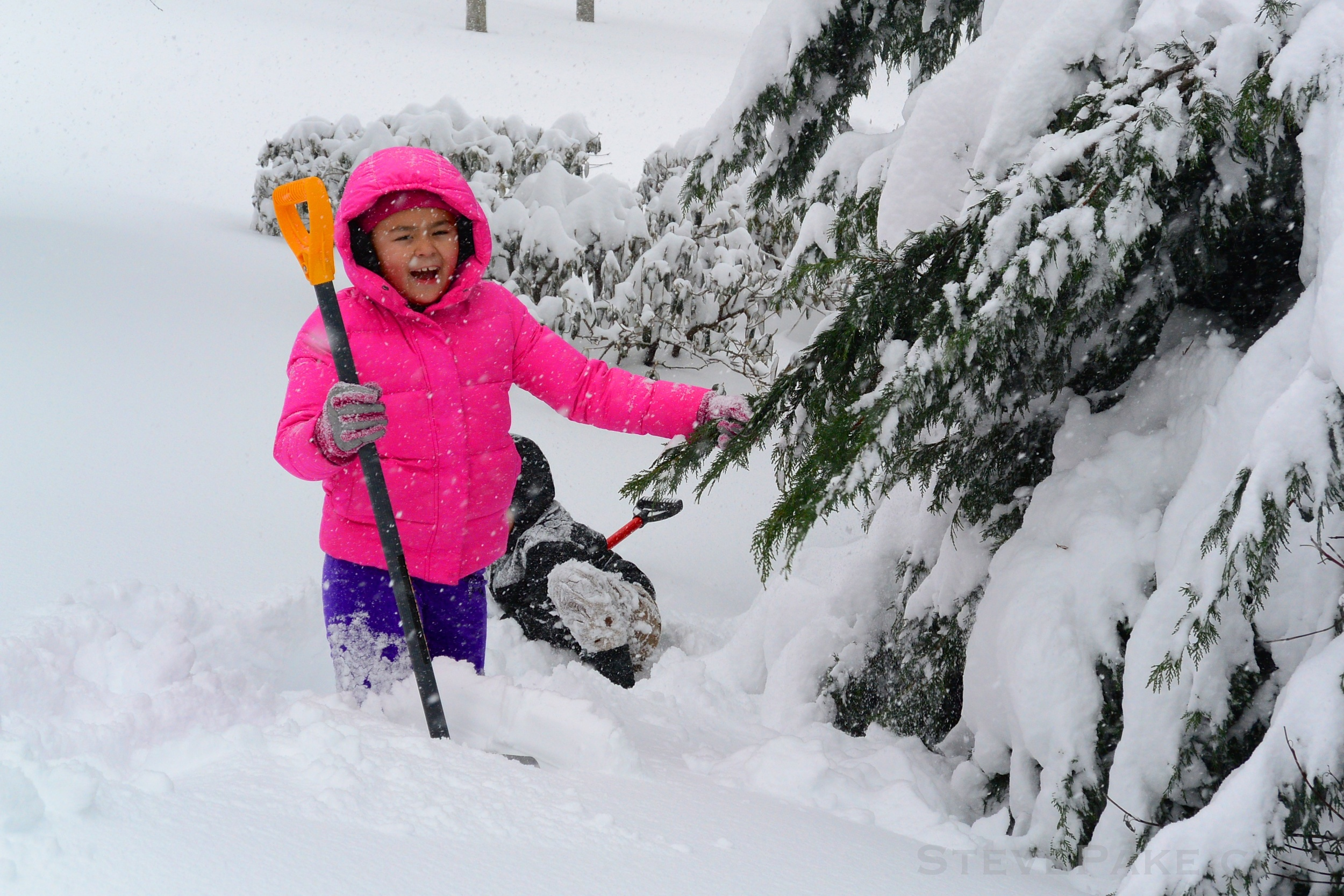 Snowzilla2016-016_DSC_9888.jpg