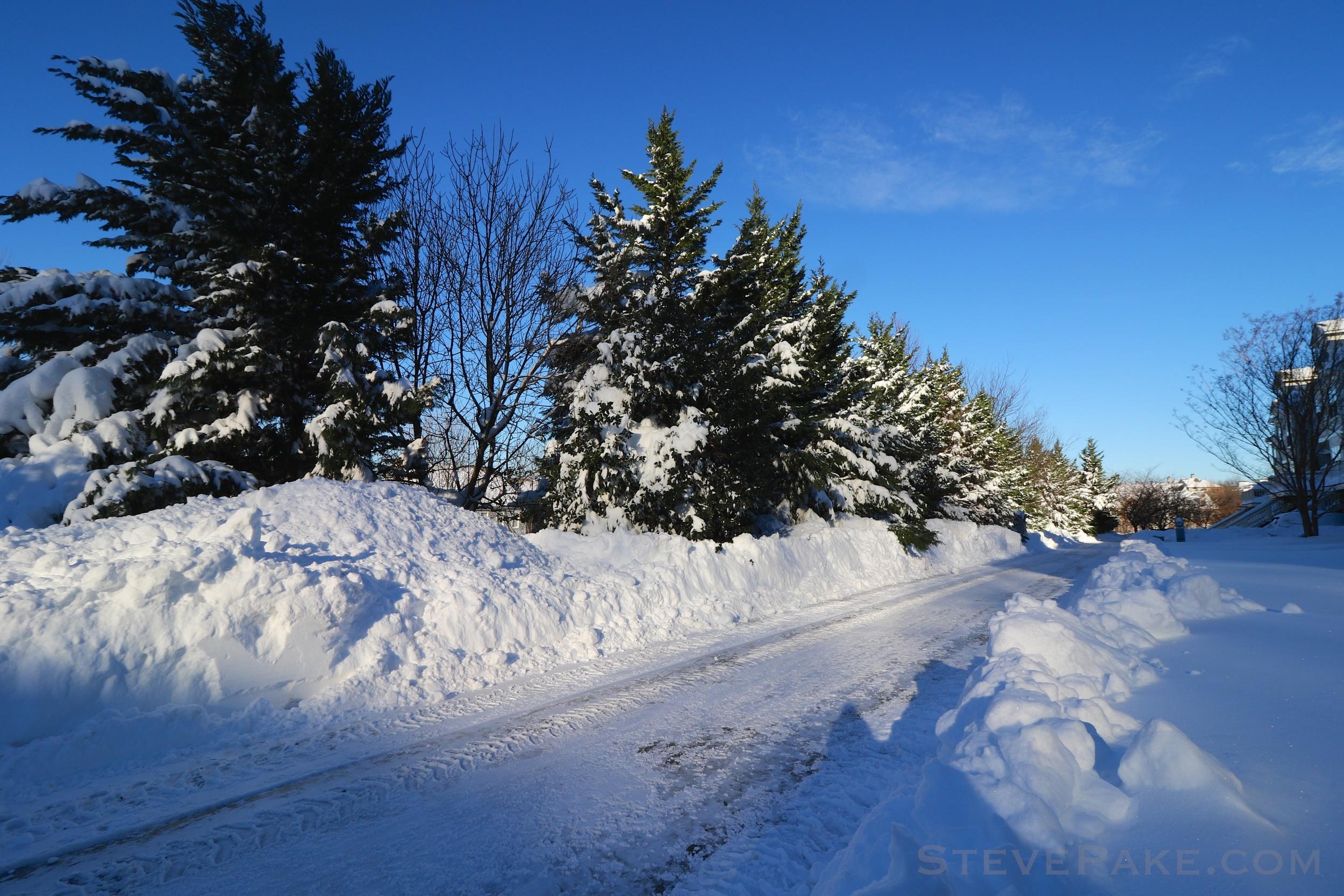 Snowzilla2016-036_GE3A5068.jpg