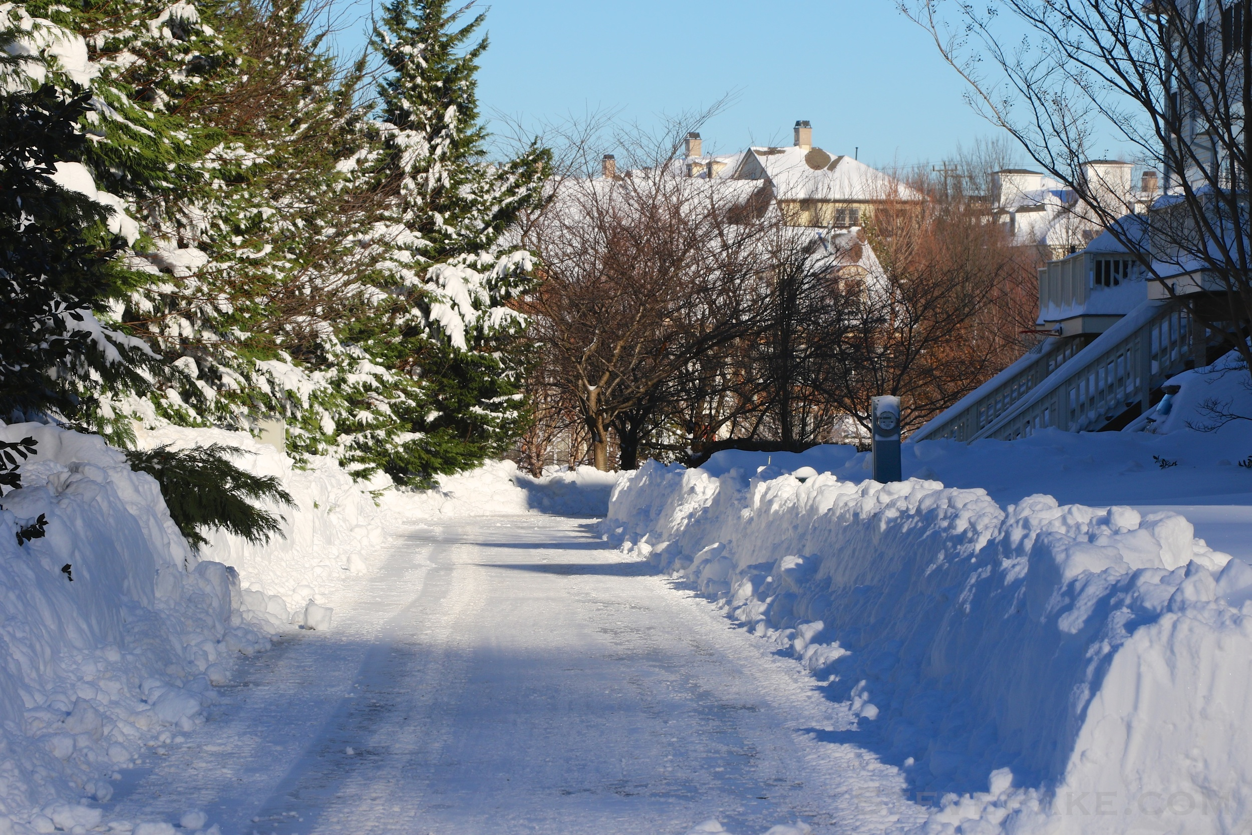 Snowzilla2016-043_GE3A5088.jpg