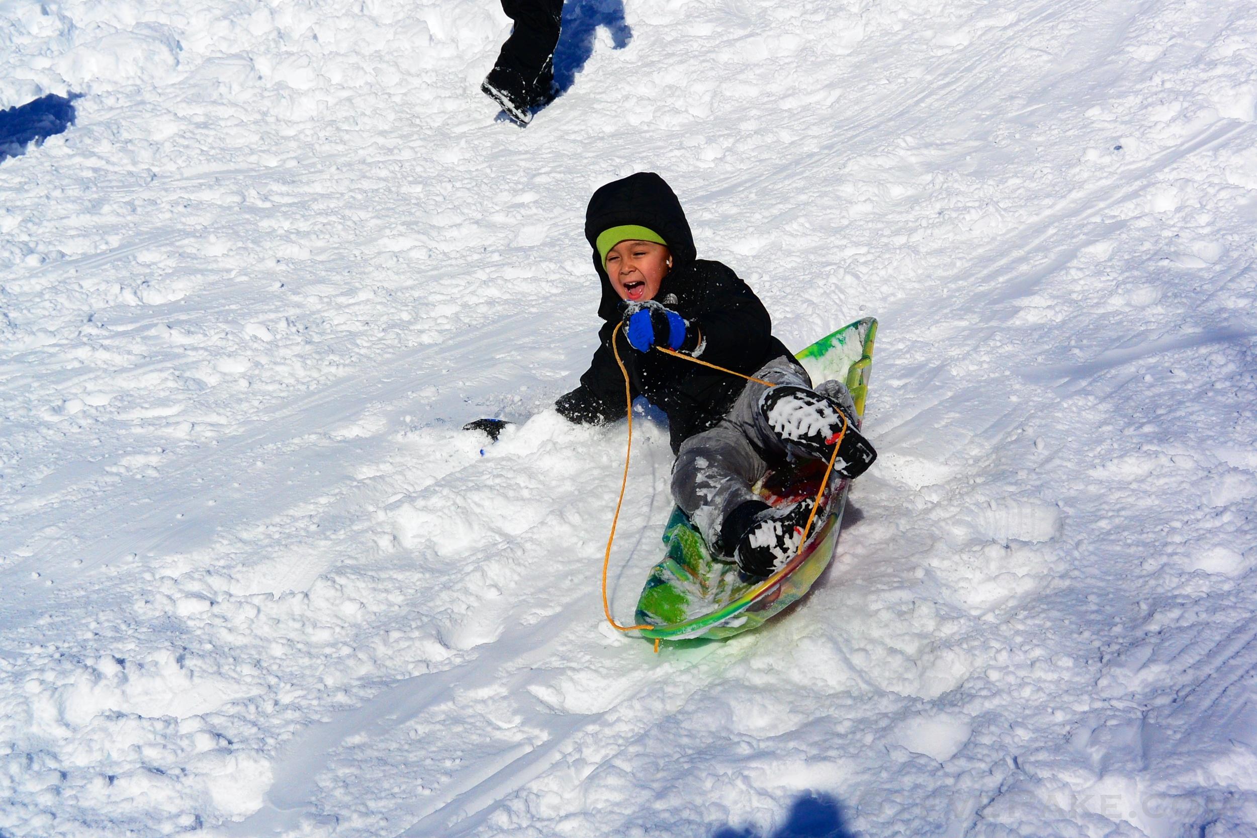 Snowzilla2016-065_DSC_0008.jpg