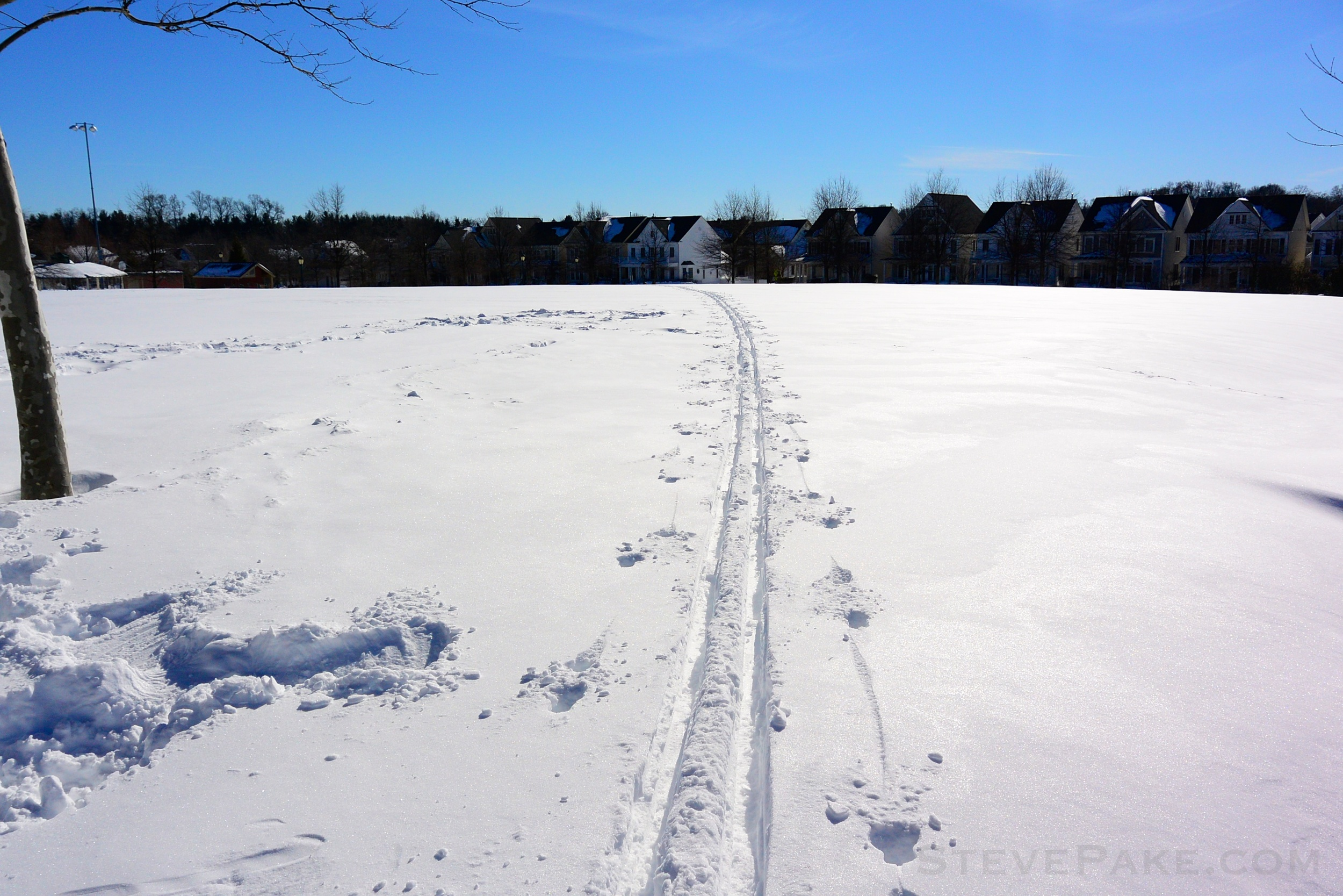 Snowzilla2016-078_DSC_0424.jpg