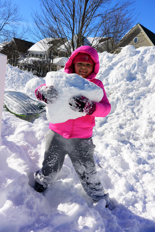 Snowzilla2016-079_DSC_0434.jpg