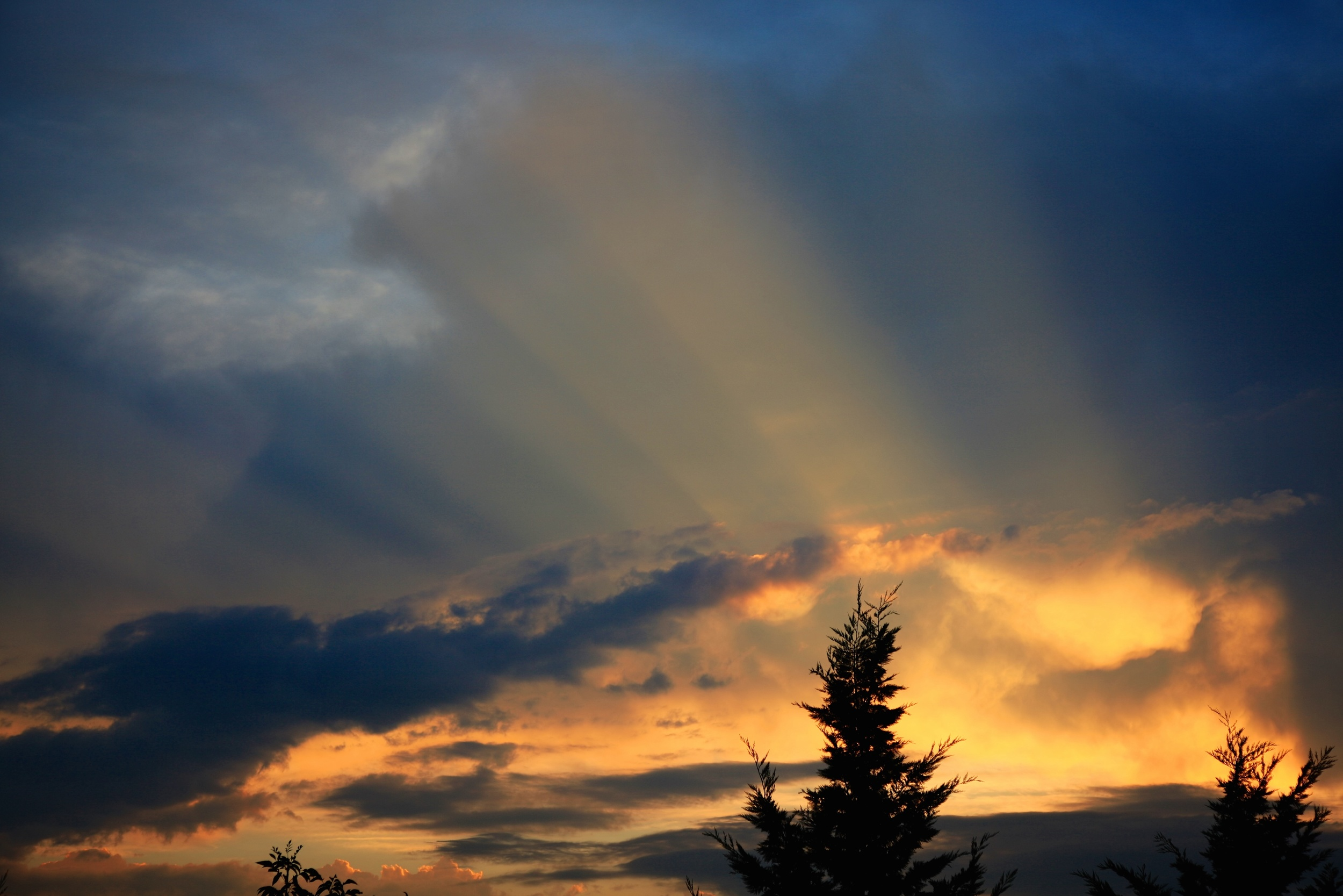 Life goes on, and the sun will rise and set again for many of us after cancer, but not for all. Survivor's guilt is a very normal part of the cancer survivorship experience. It can be tremendously painful, but is also a huge opportunity for growth in our lives.