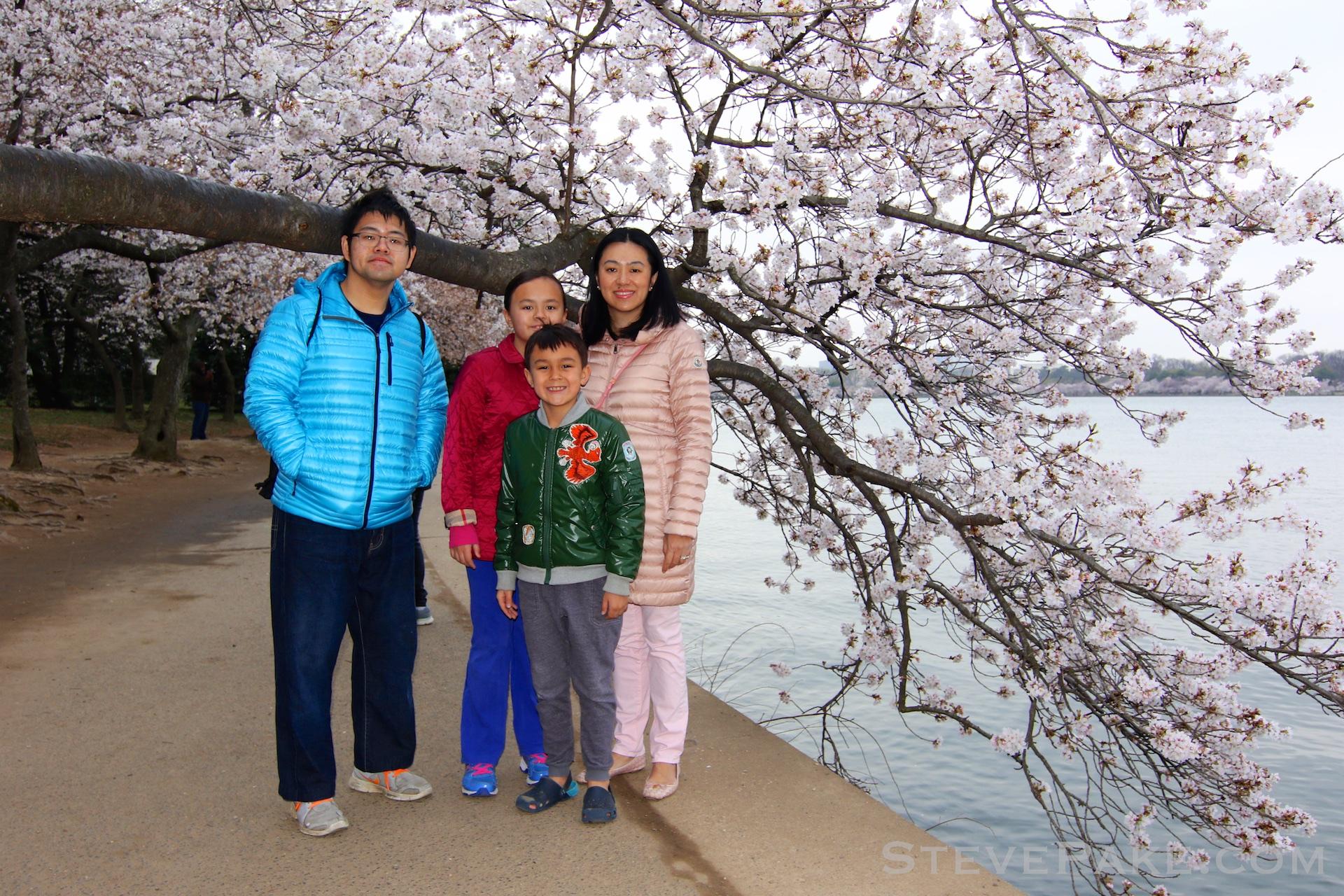 GE3A5728ap-2k_DC-Cherry-Blossoms-WM.jpg