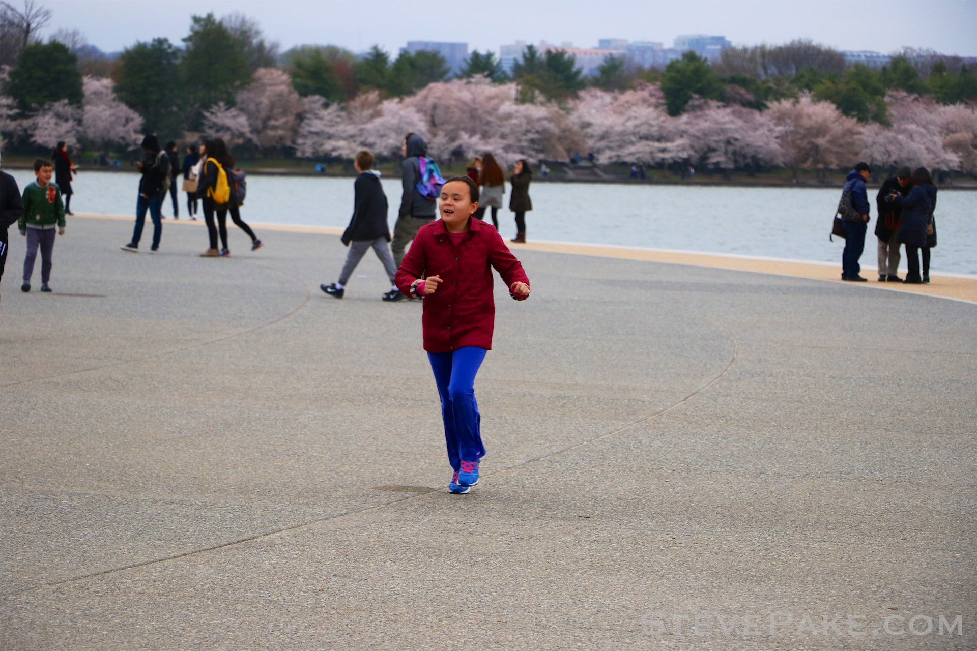 GE3A5744ap-2k_DC-Cherry-Blossoms-WM.jpg