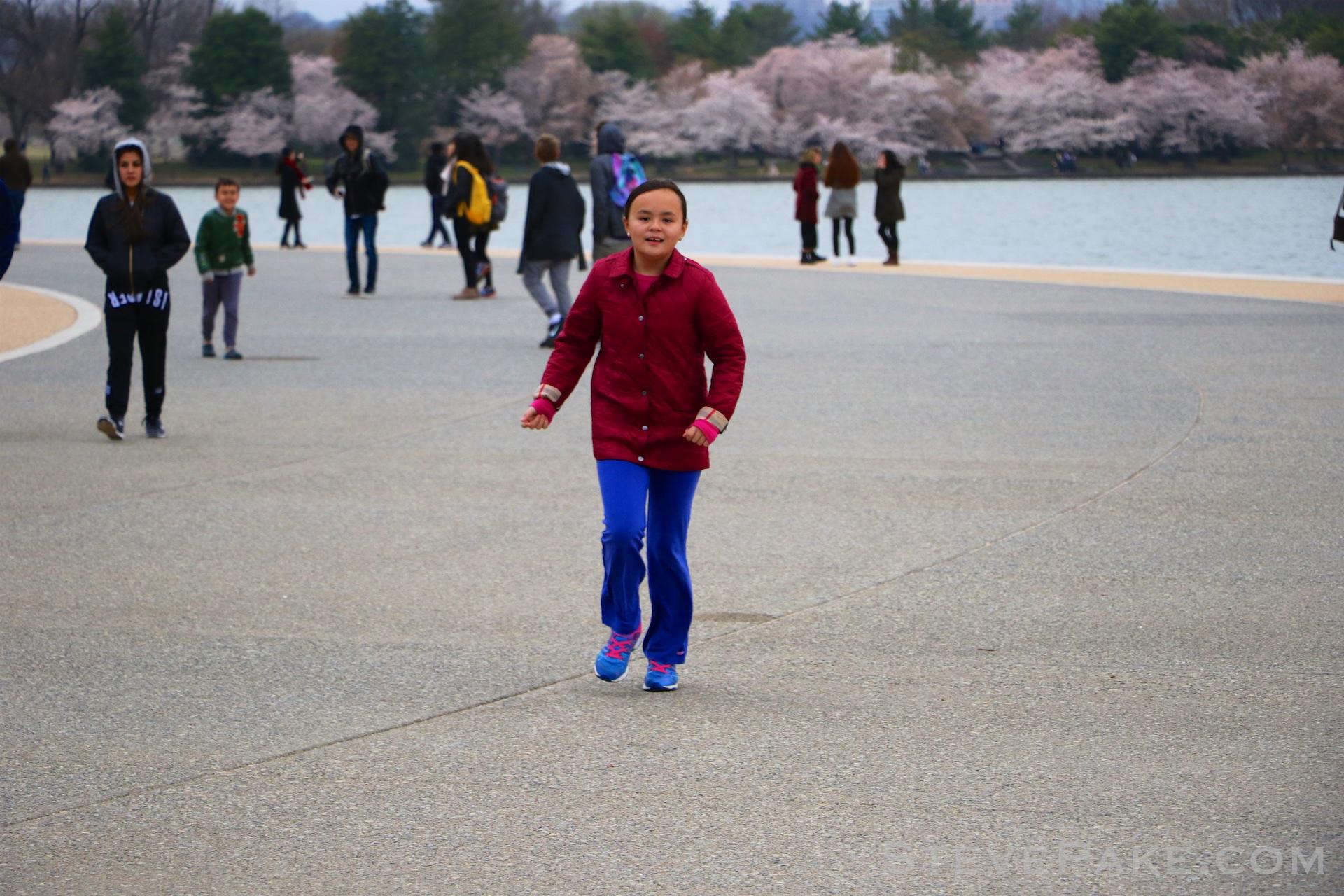 GE3A5747ap-2k_DC-Cherry-Blossoms-WM.jpg