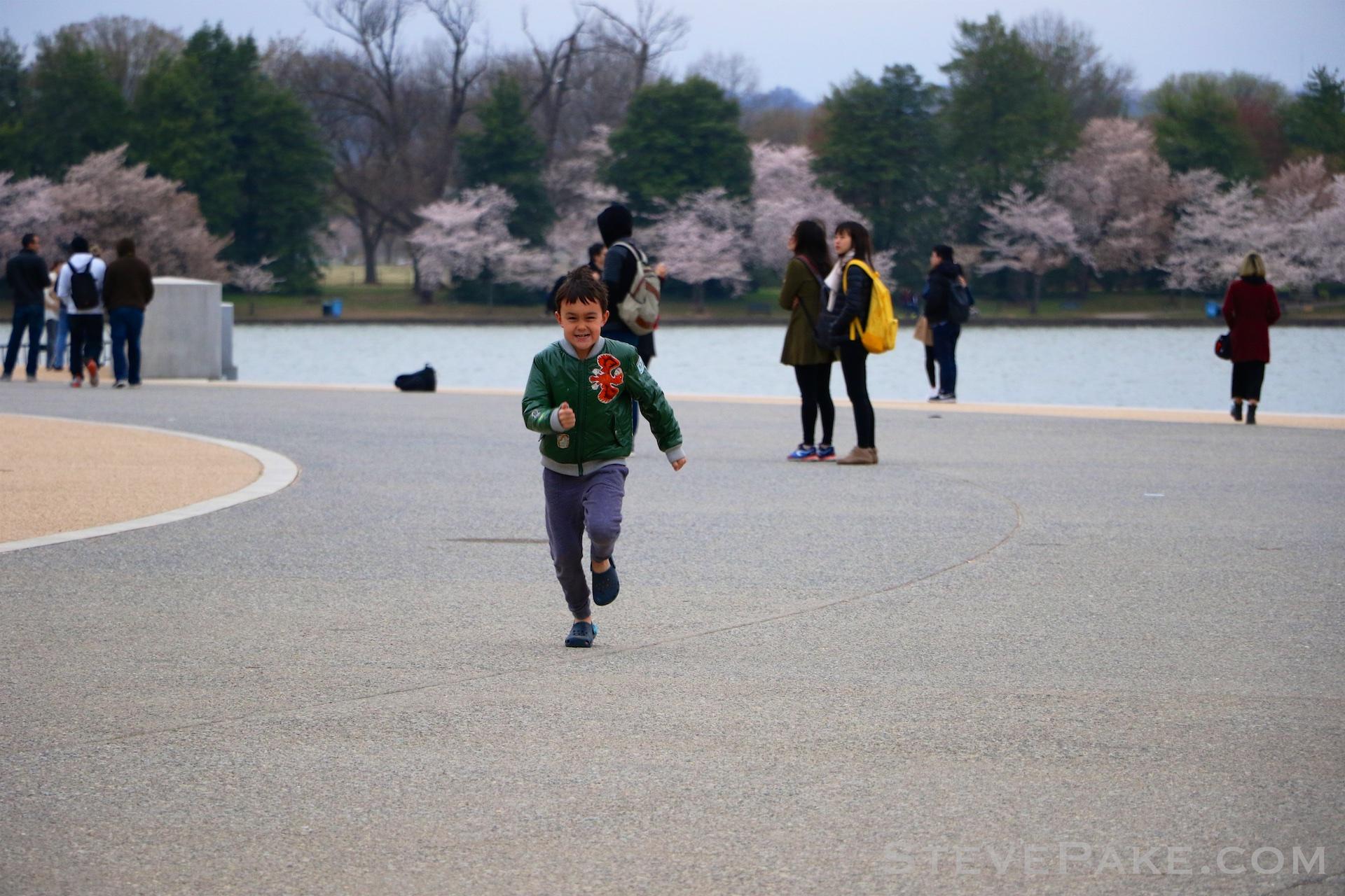 GE3A5748ap-2k_DC-Cherry-Blossoms-WM.jpg