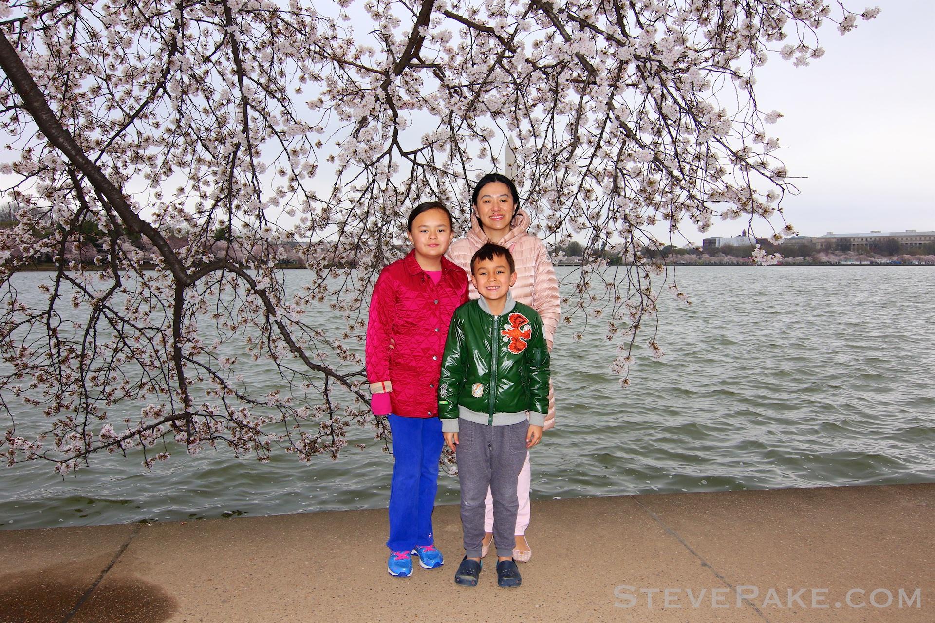 GE3A5833ap-2k_DC-Cherry-Blossoms-WM.jpg