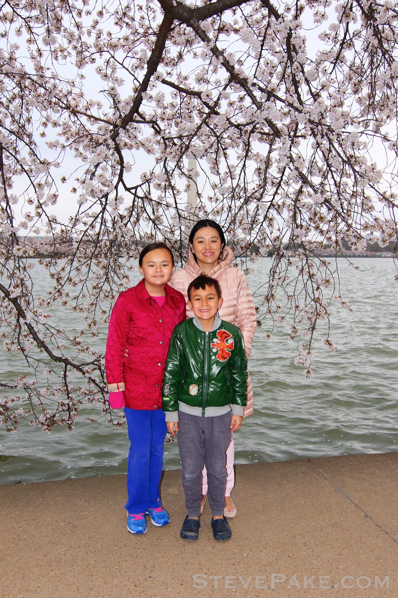 GE3A5834ap-2k_DC-Cherry-Blossoms-WM.jpg