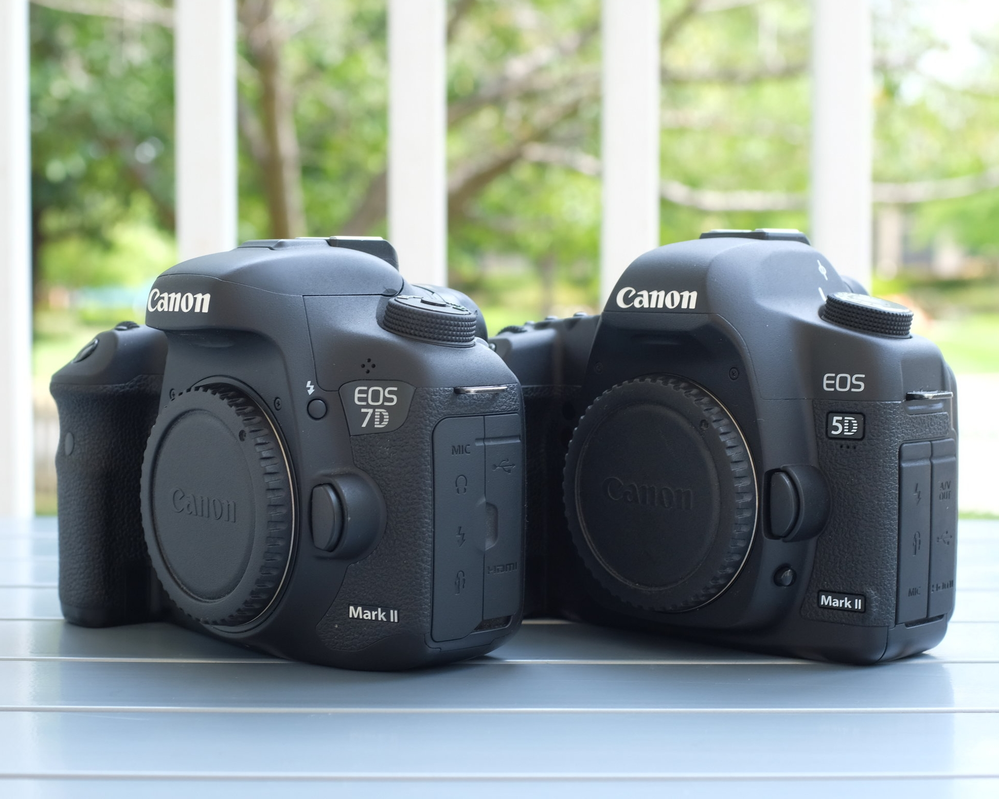 My current DSLR workhorses, the more modern Canon 7D Mark II high-performance APS-C body on the left, and my older Canon 5D Mark II full-frame body that I use for portraiture and more artistic type photos on the right.