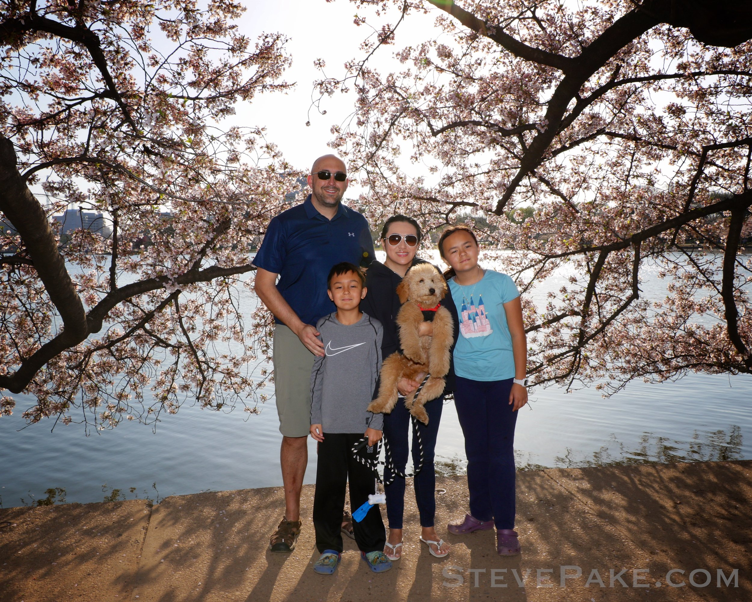 Pake Family at the DC Cherry Blossoms 2018
