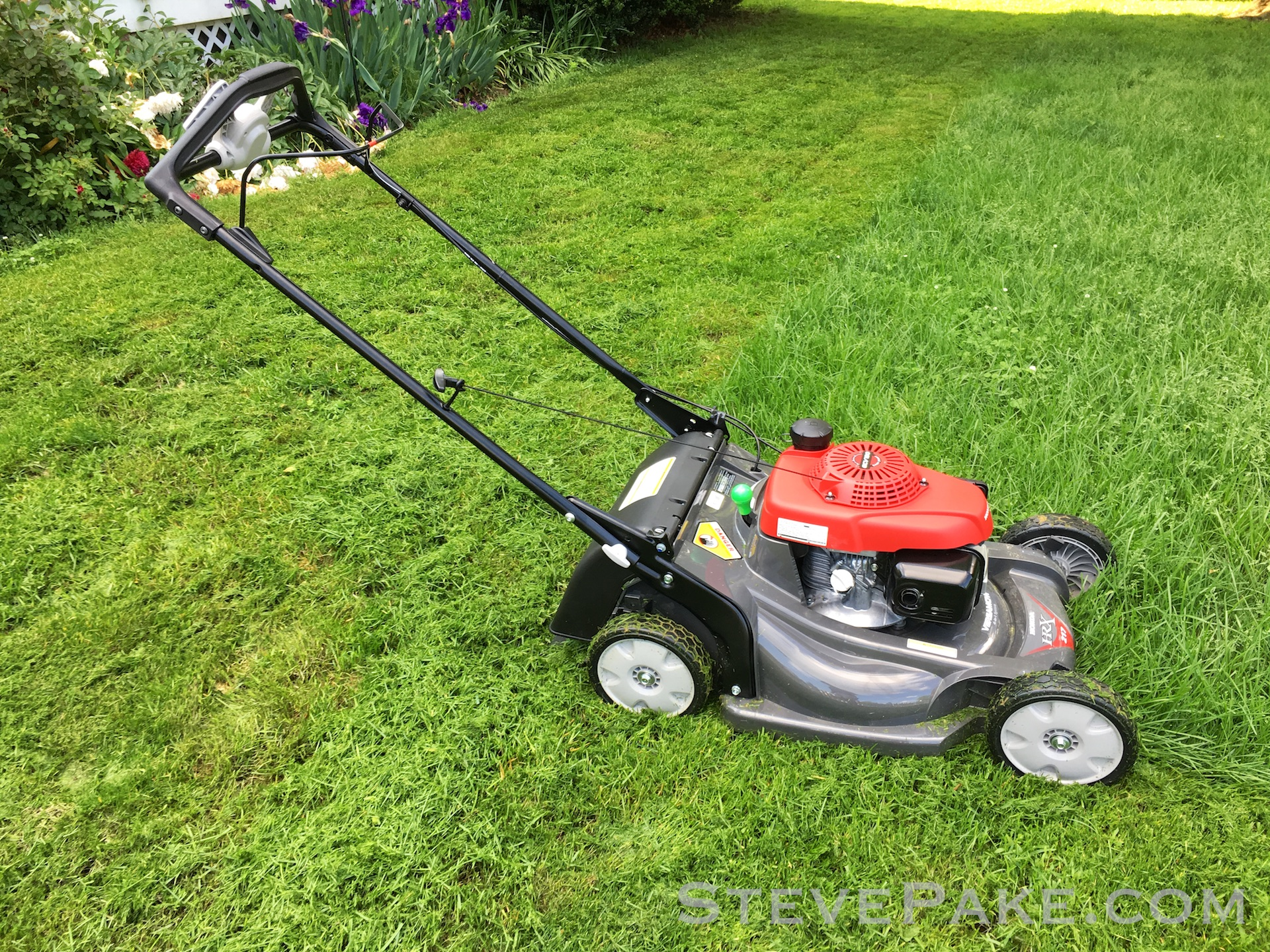 I eventually had to switch to partial bagging mode because it was just too much to be mulching well for any mower, but this 5.1 net horsepower (3.8kW) mower chewed right through it all at speed.