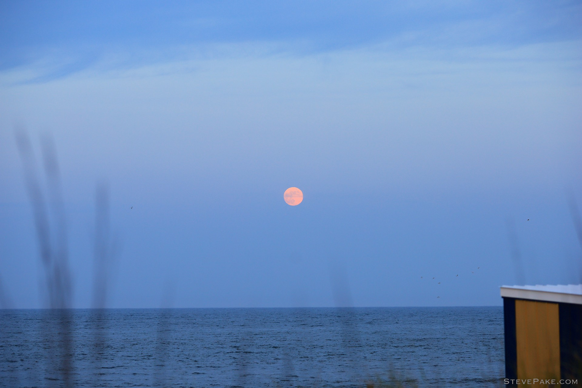 Moonrise with the 135L at f/4, 1/160s, and ISO 250.