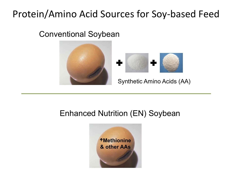 enhanced-nutrition.jpg