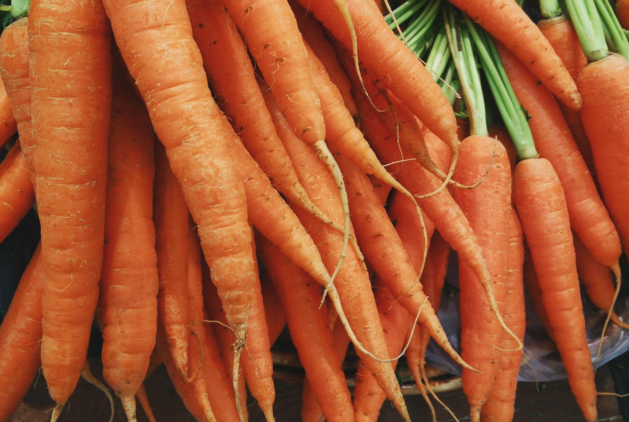 Carrots_BLOG.jpg