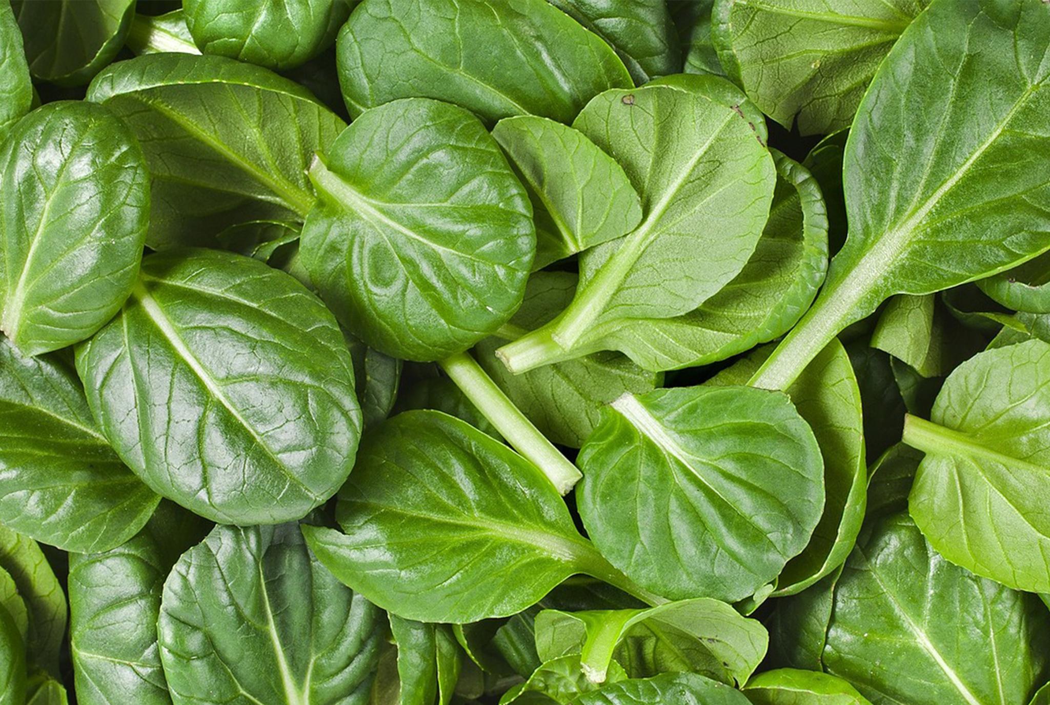 Spinach_BLOG.jpg