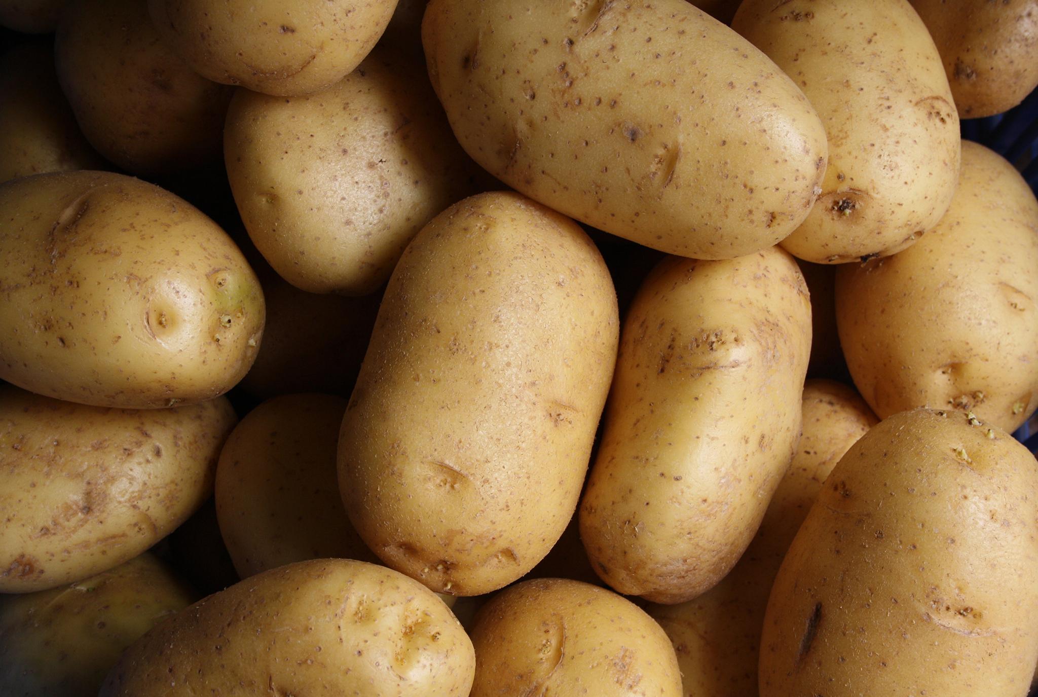 Potatoes_BLOG.jpg