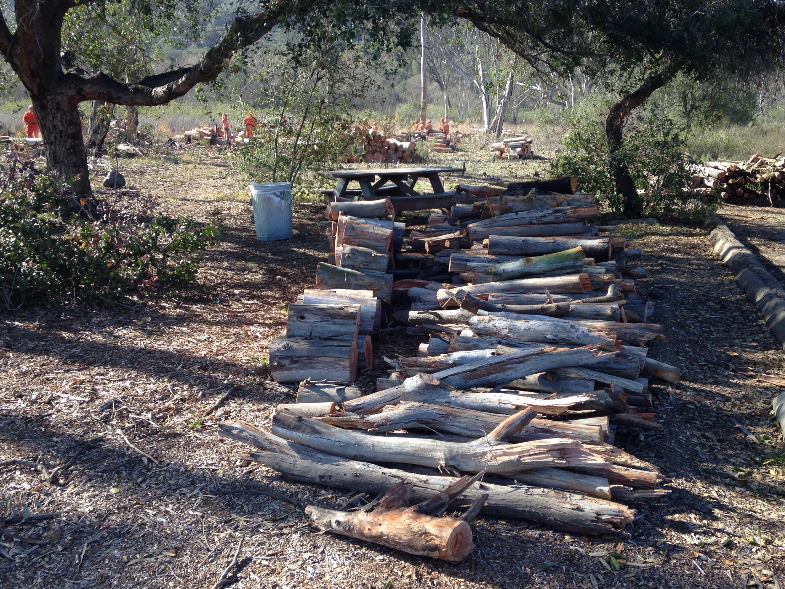 CalFire Crew Firewood Cleanup 2