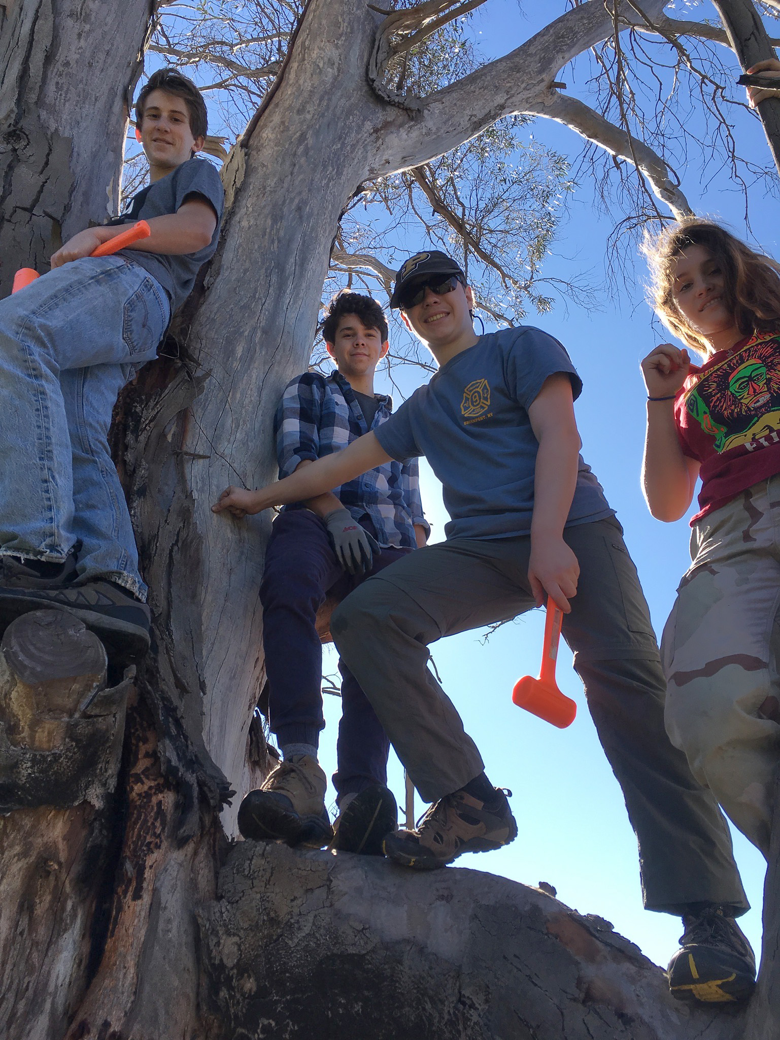 """The """"Mulefat Chain Gang"""" earned their name by planting 300 pole cuttings in a single day!"""