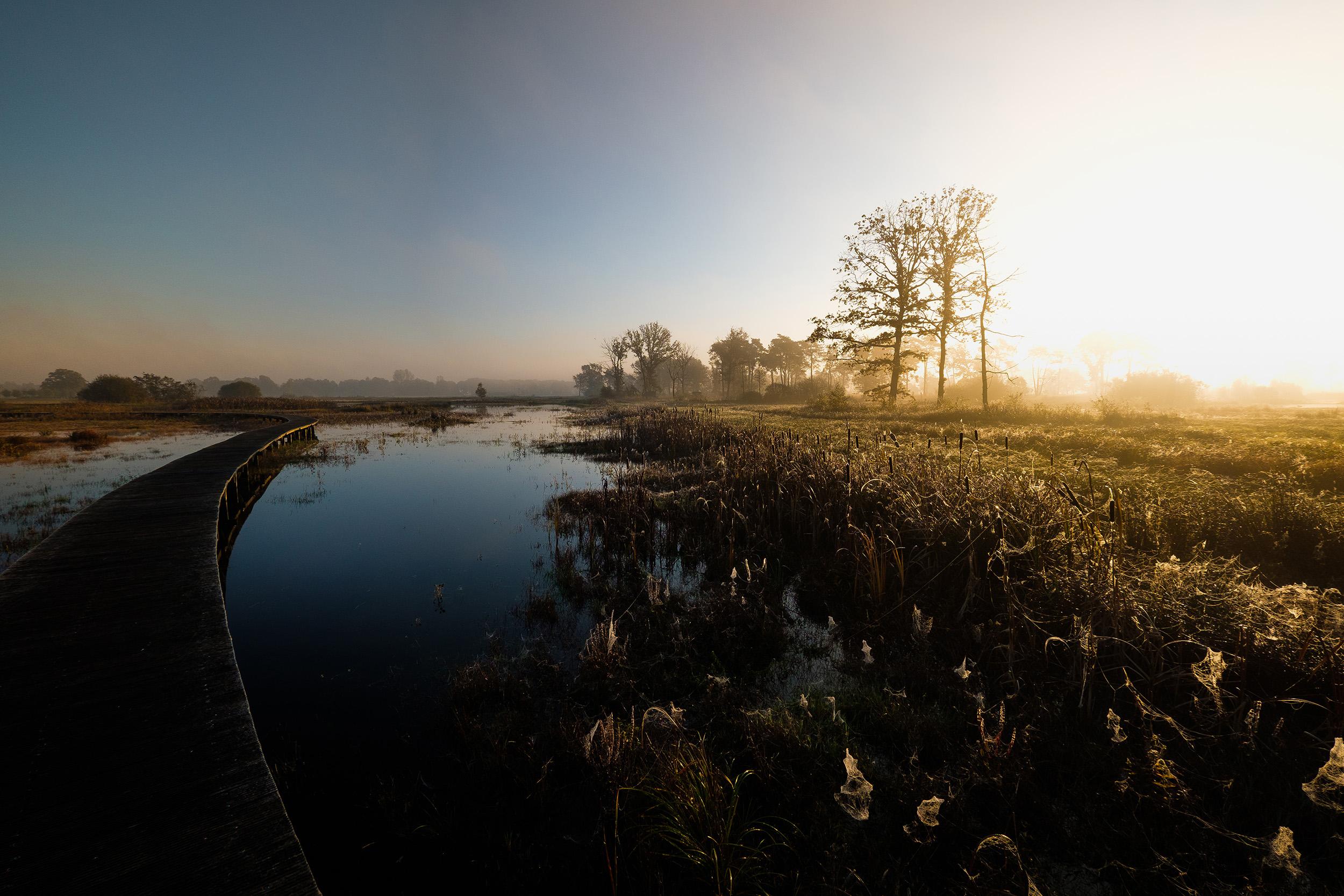 Empese en Tondese Heide (3 of 8).jpg