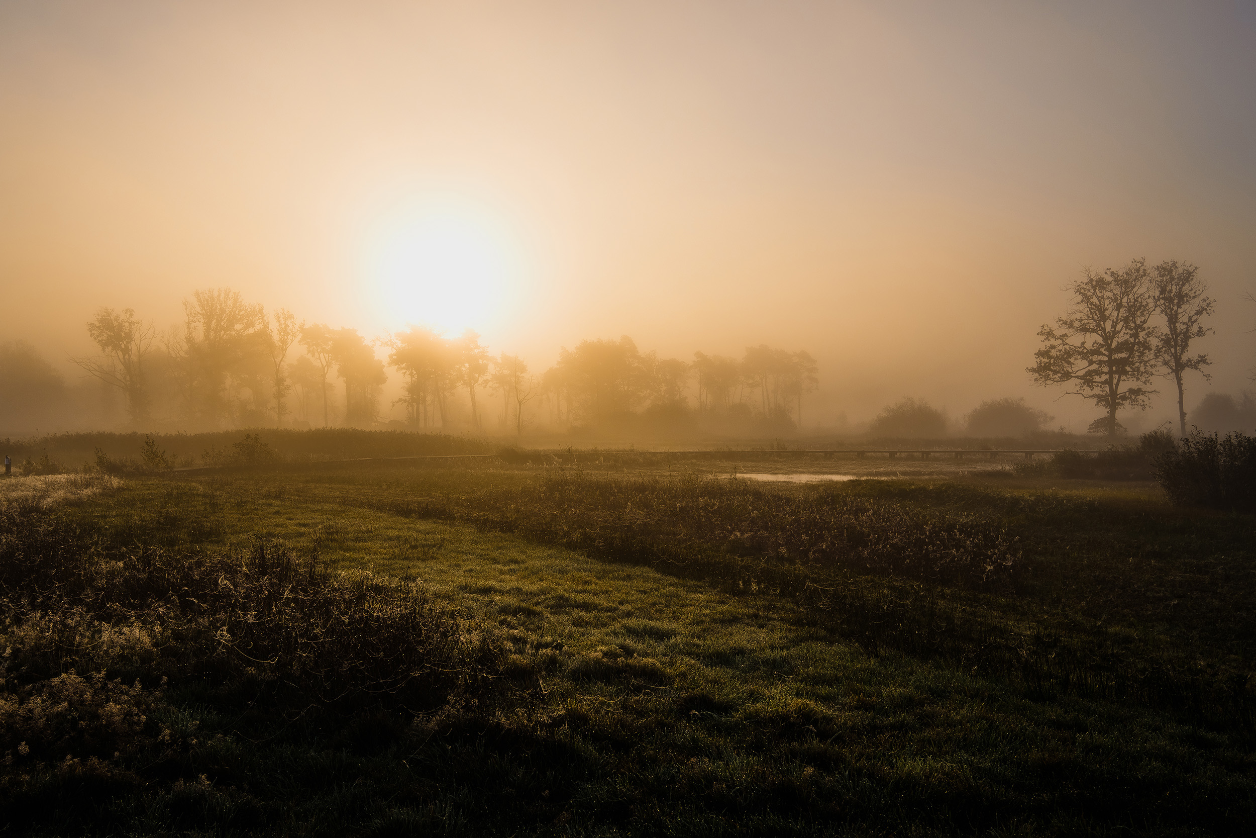 Empese en Tondese Heide (1 of 8).jpg