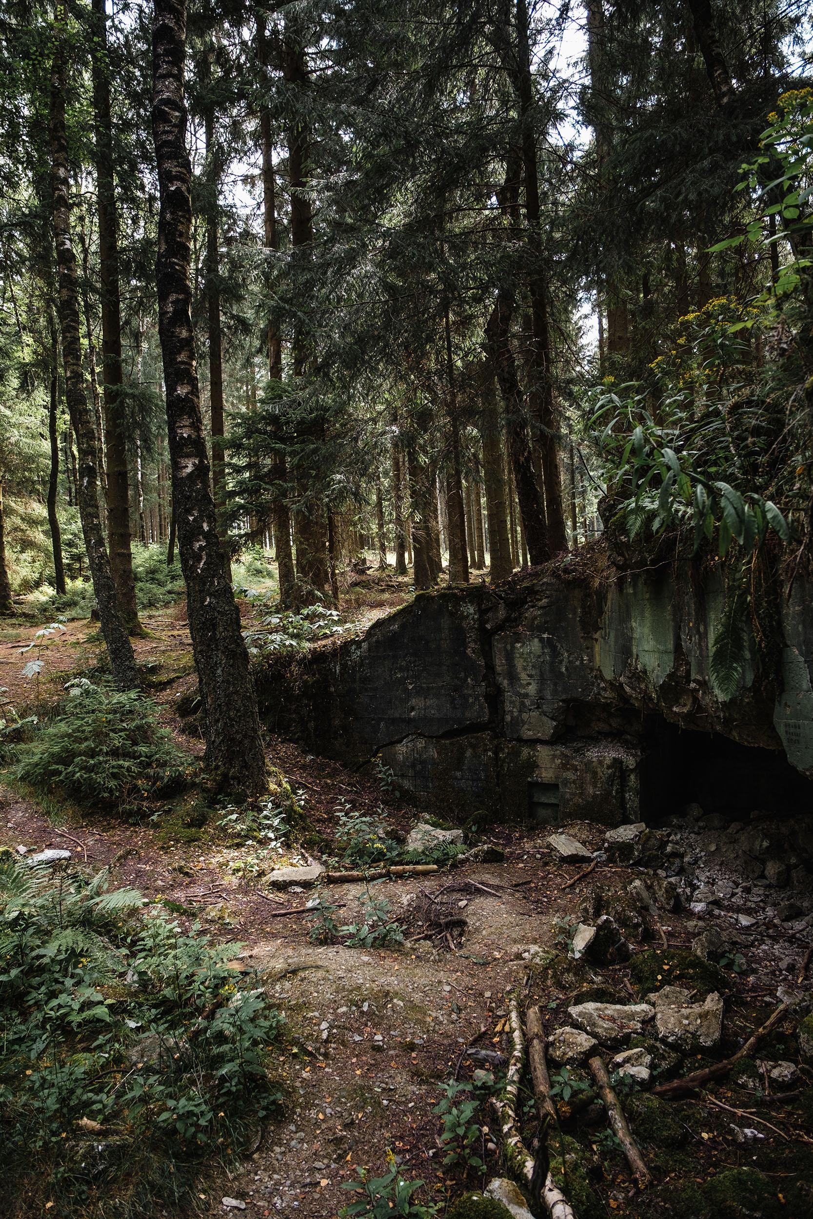 Hurtgen Wald-13.jpg