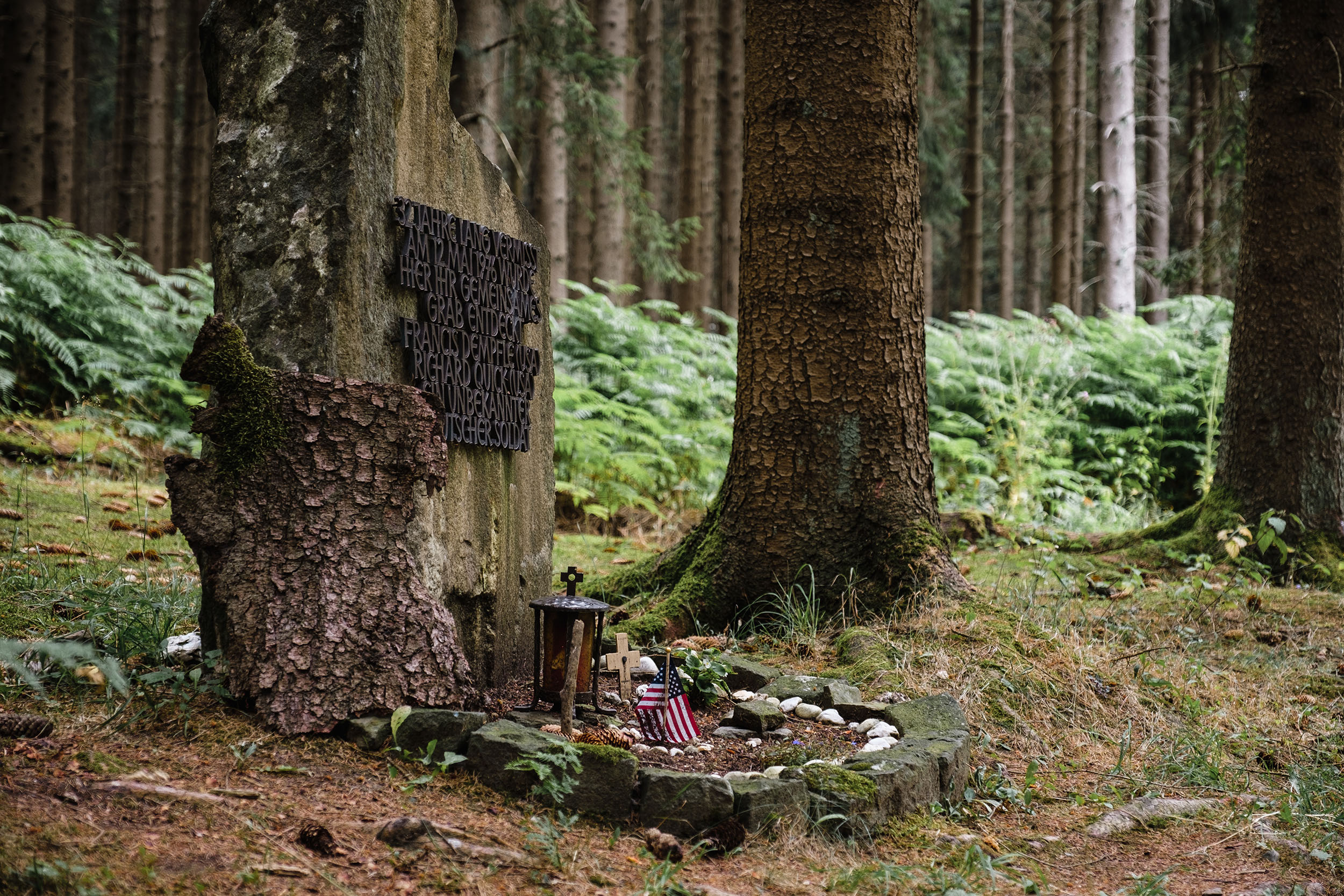 Hurtgen Wald-2.jpg