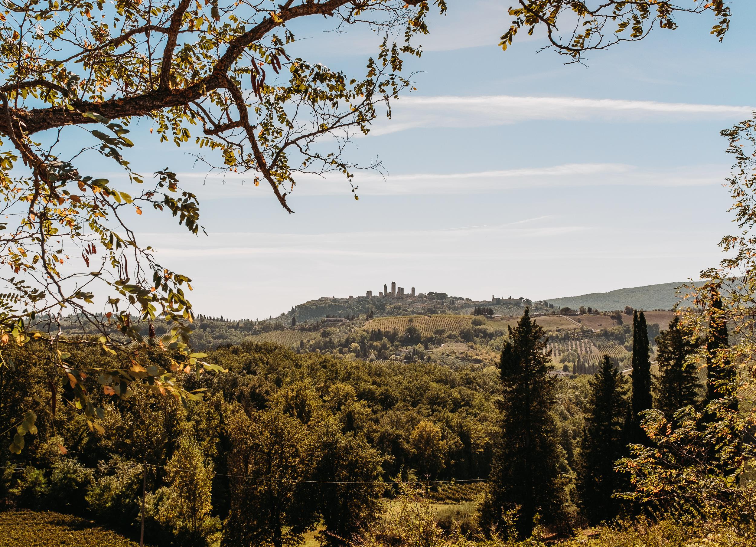 Italy Tuscany-3.jpg