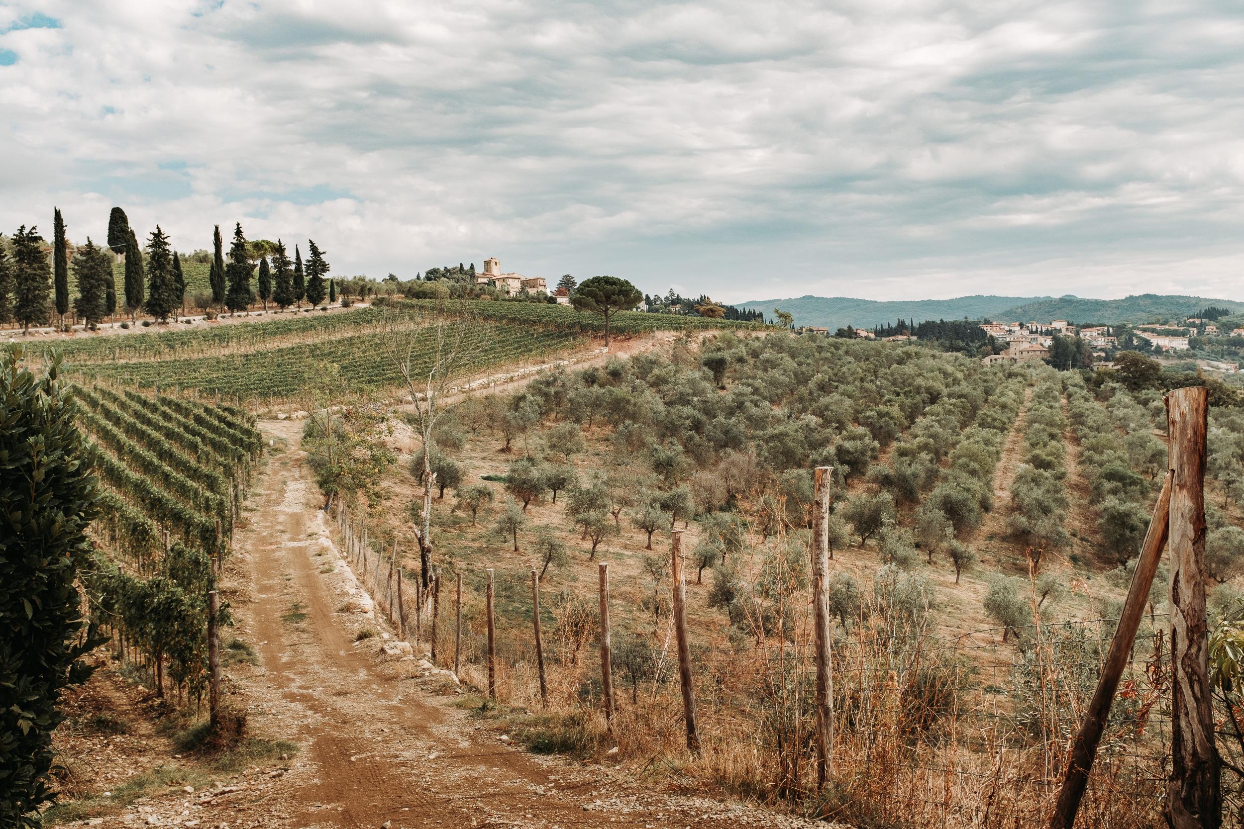 Italy Tuscany-28.jpg