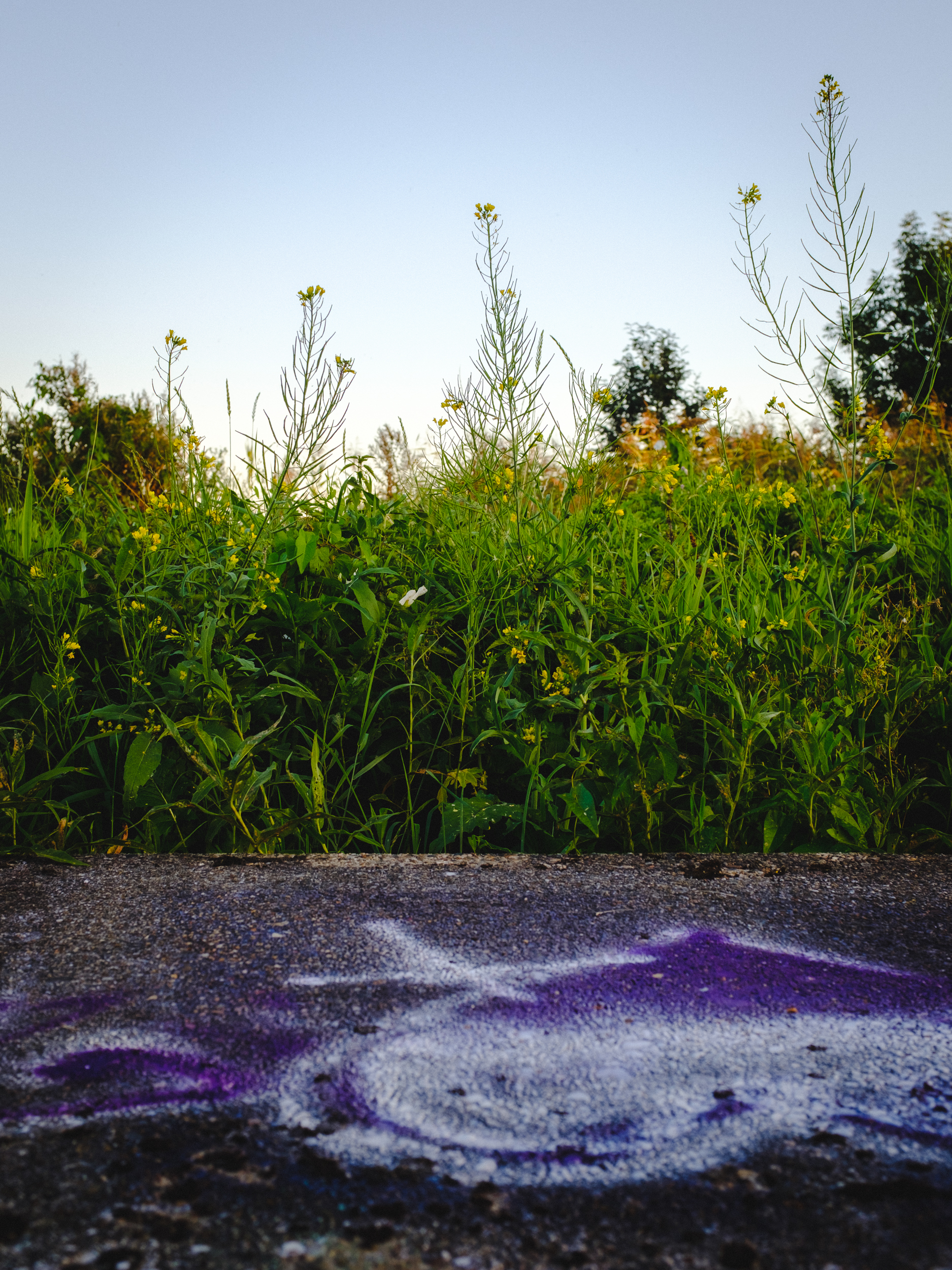X100F meets Graffiti-4.jpg