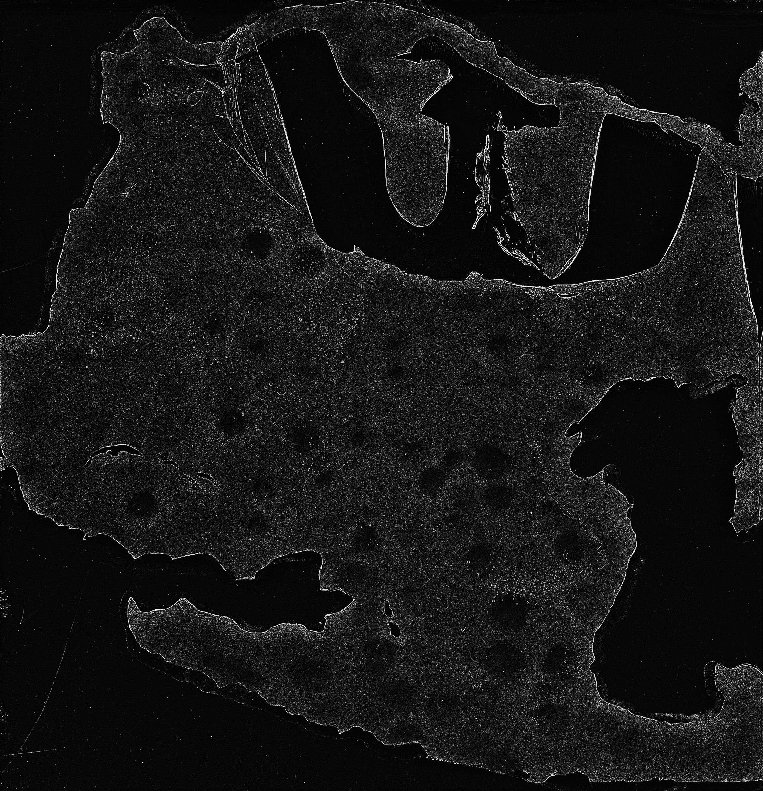 Imaginary Island Surface  bw.jpg