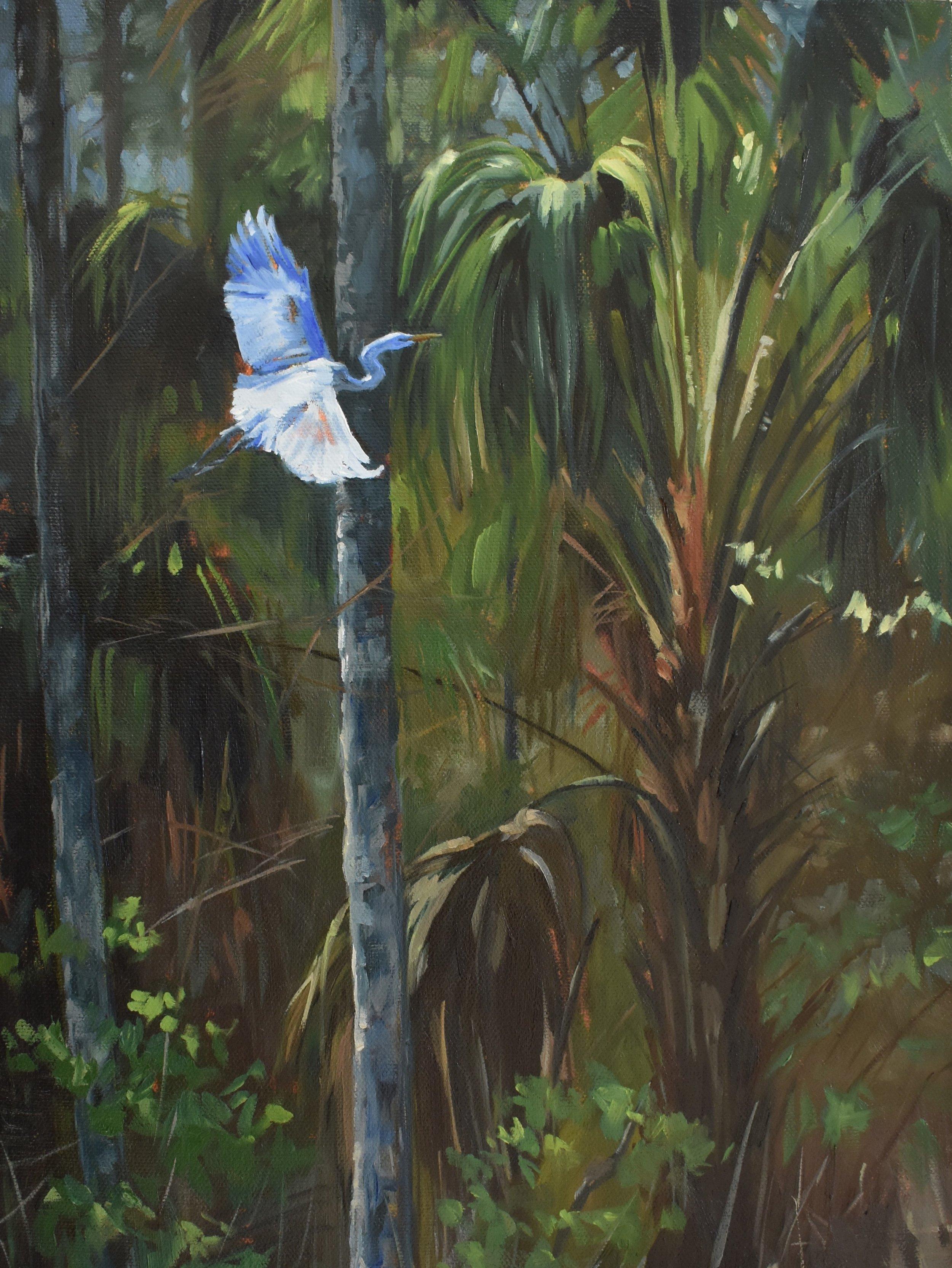 egret and palm raw file 72dpi.jpg