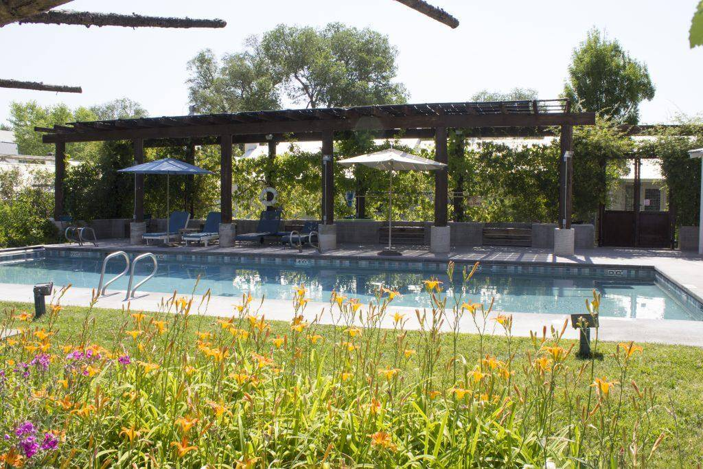 summer-pool-2016-1024x683__large.jpg