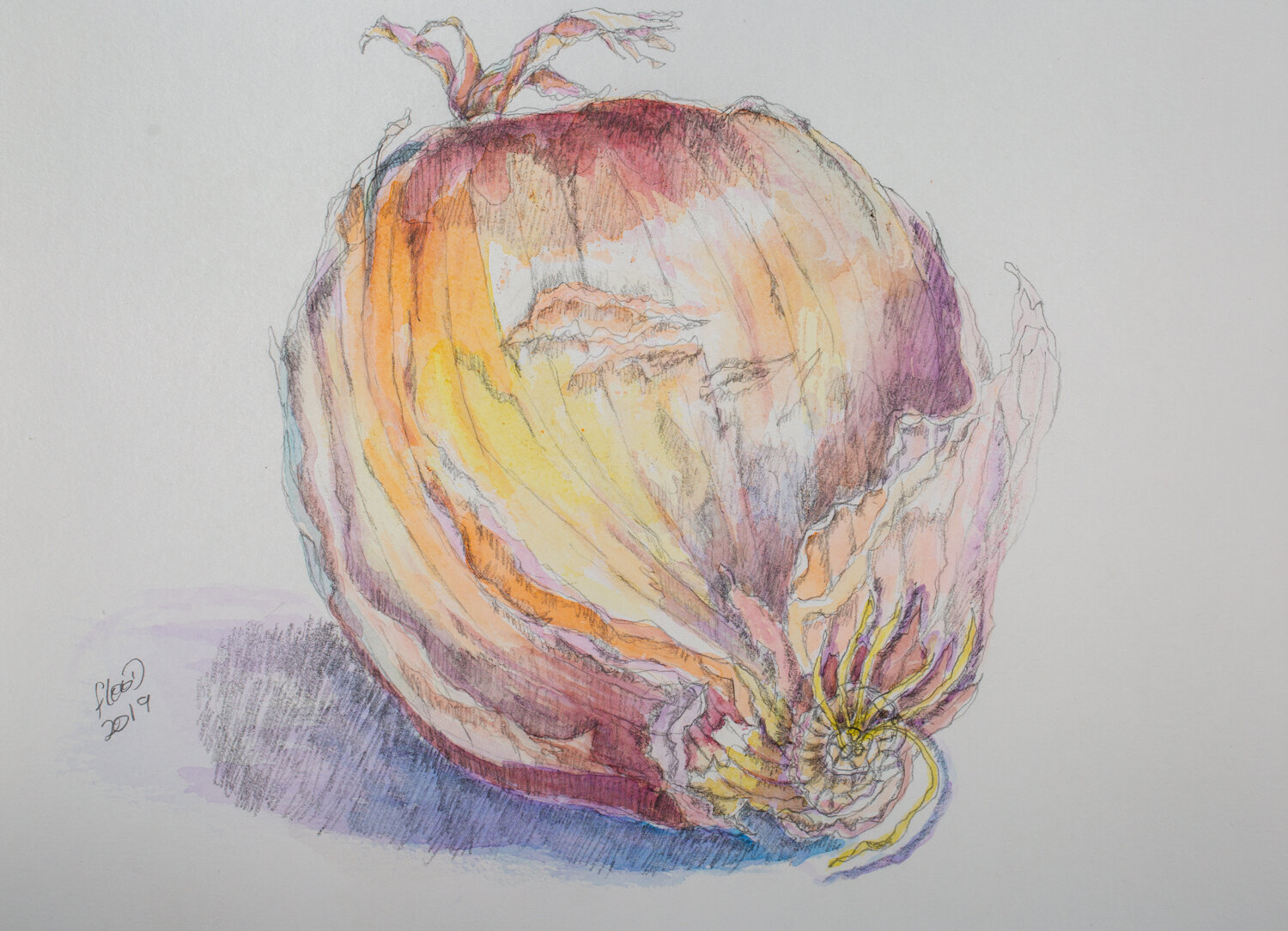 French Onion, by Claudia Flood