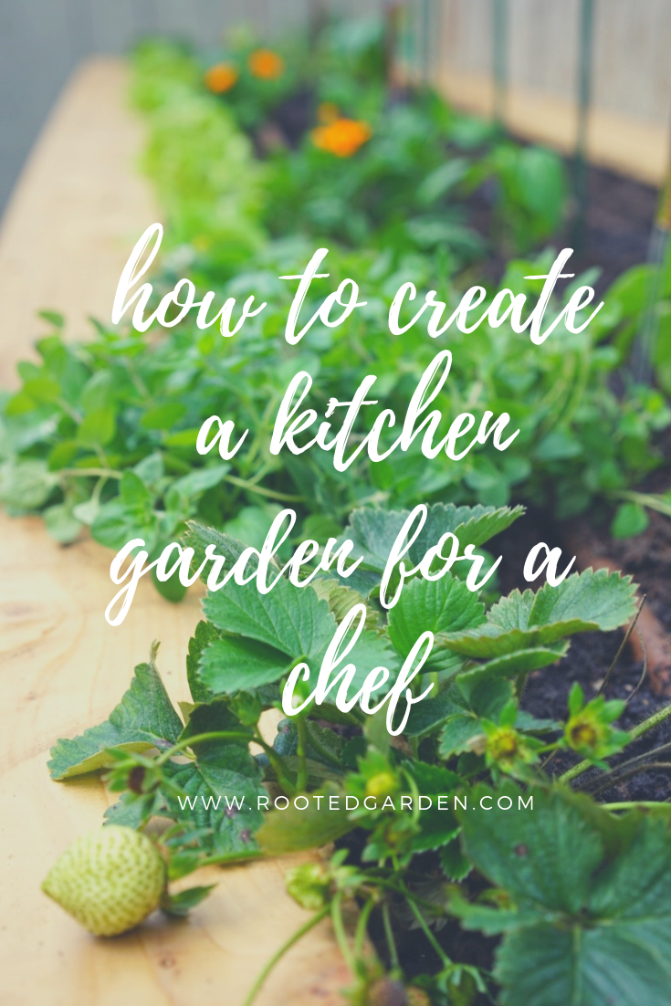 creating a kitchen garden for a chef.png