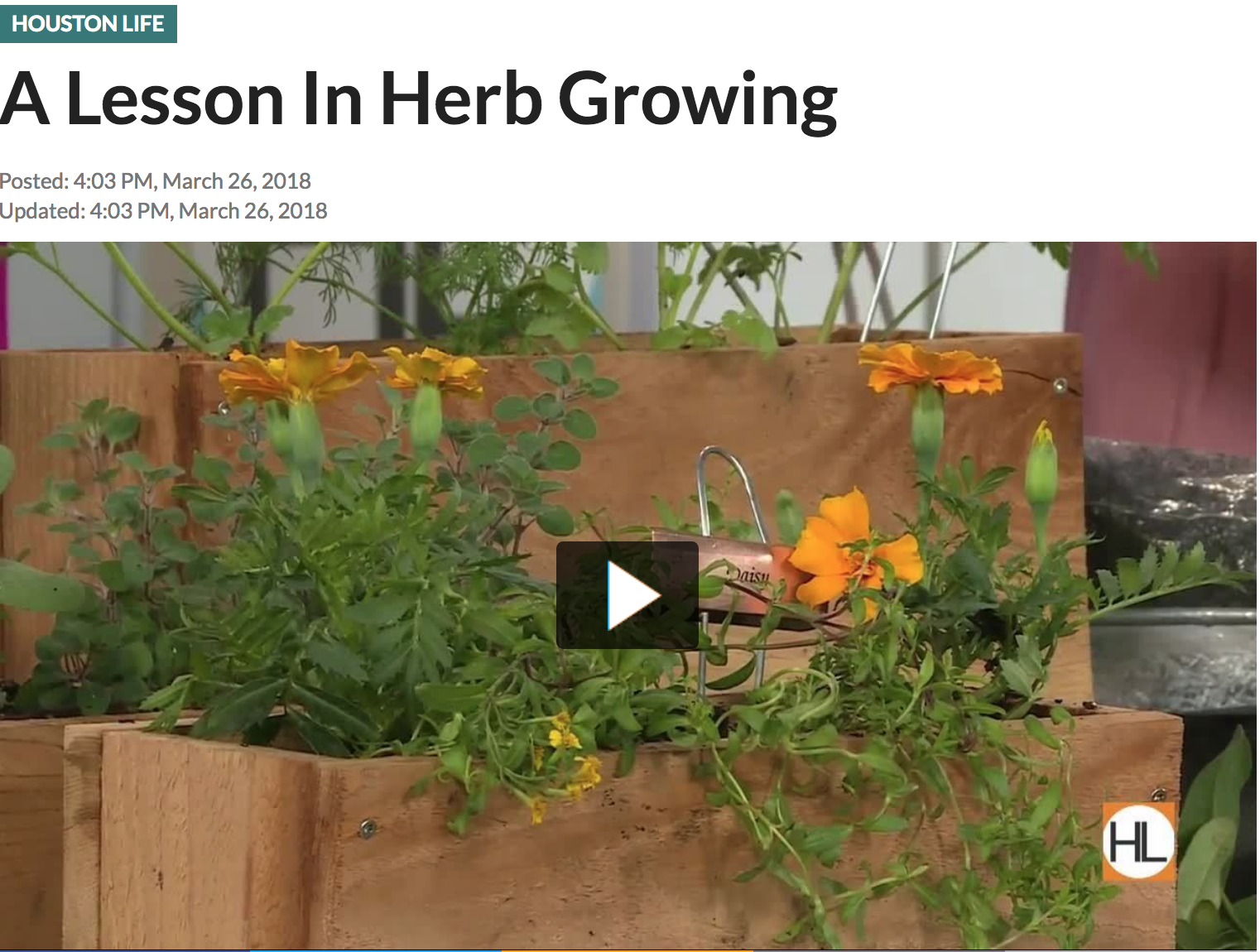 A LESSON IN GROWING HERBS - on HOUSTON LIFE TV