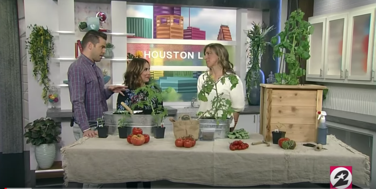 How to Grow Epic Tomatoes - Learn how to grow the very best tomatoes this season